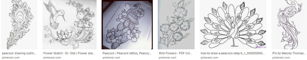 Inspirational Flower Outline Drawing peacock