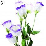 Eustoma Flower 67 with Eustoma Flower