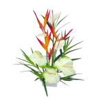 Hawaiian Tropical Flowers 77 with Hawaiian Tropical Flowers