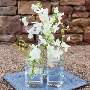 Orchid Centerpiece 54 with Orchid Centerpiece