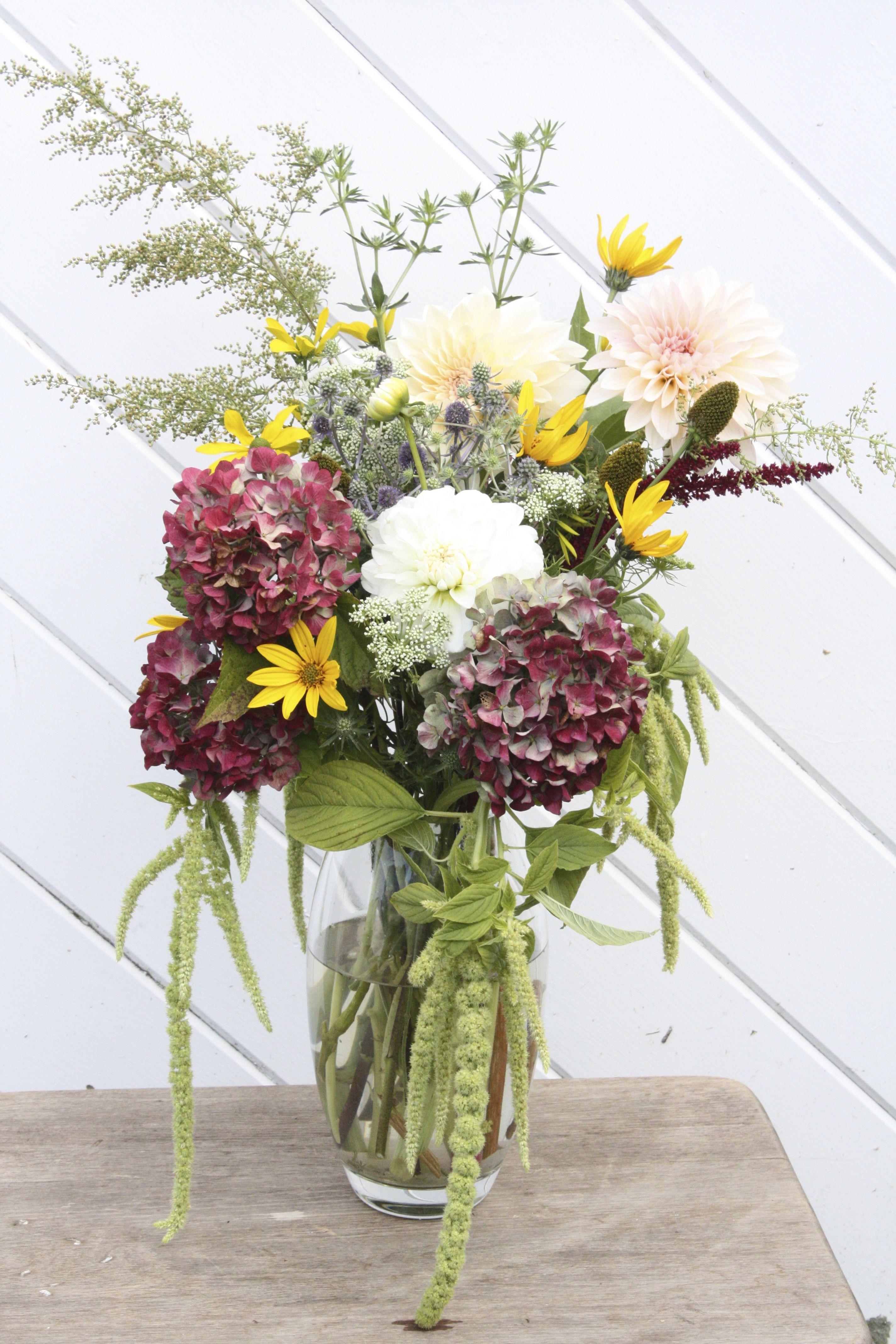 Amaranthus Flower Best Of October Seasonal Flowers Dahlia Hydrangea Sweet Annie Emerald