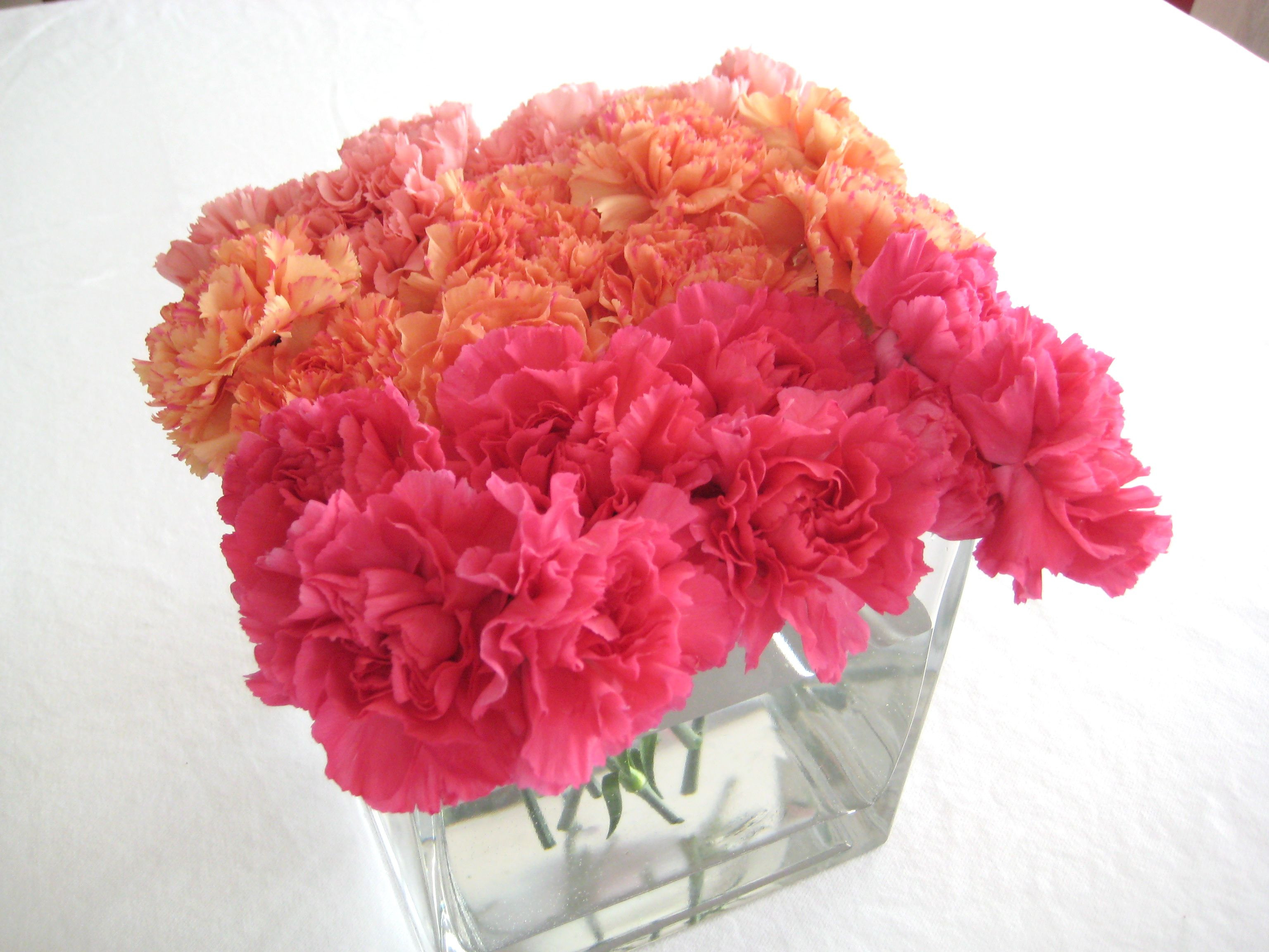 Ombre Carnations Beautiful centerpieces for spring or summer