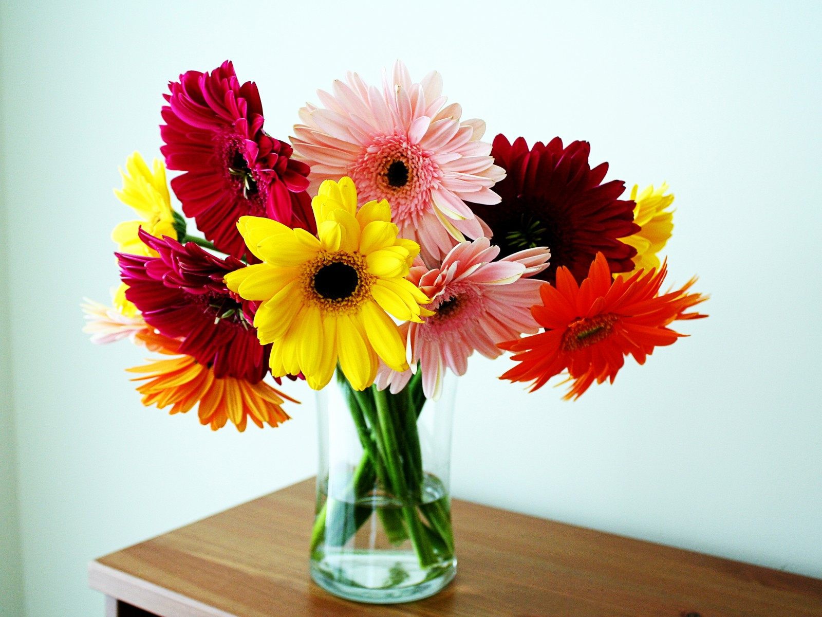 35 Awesome Daisy Flower Bouquet