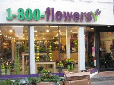 Flowers 1800 Beautiful Flower Arrangements And Flower Gardens