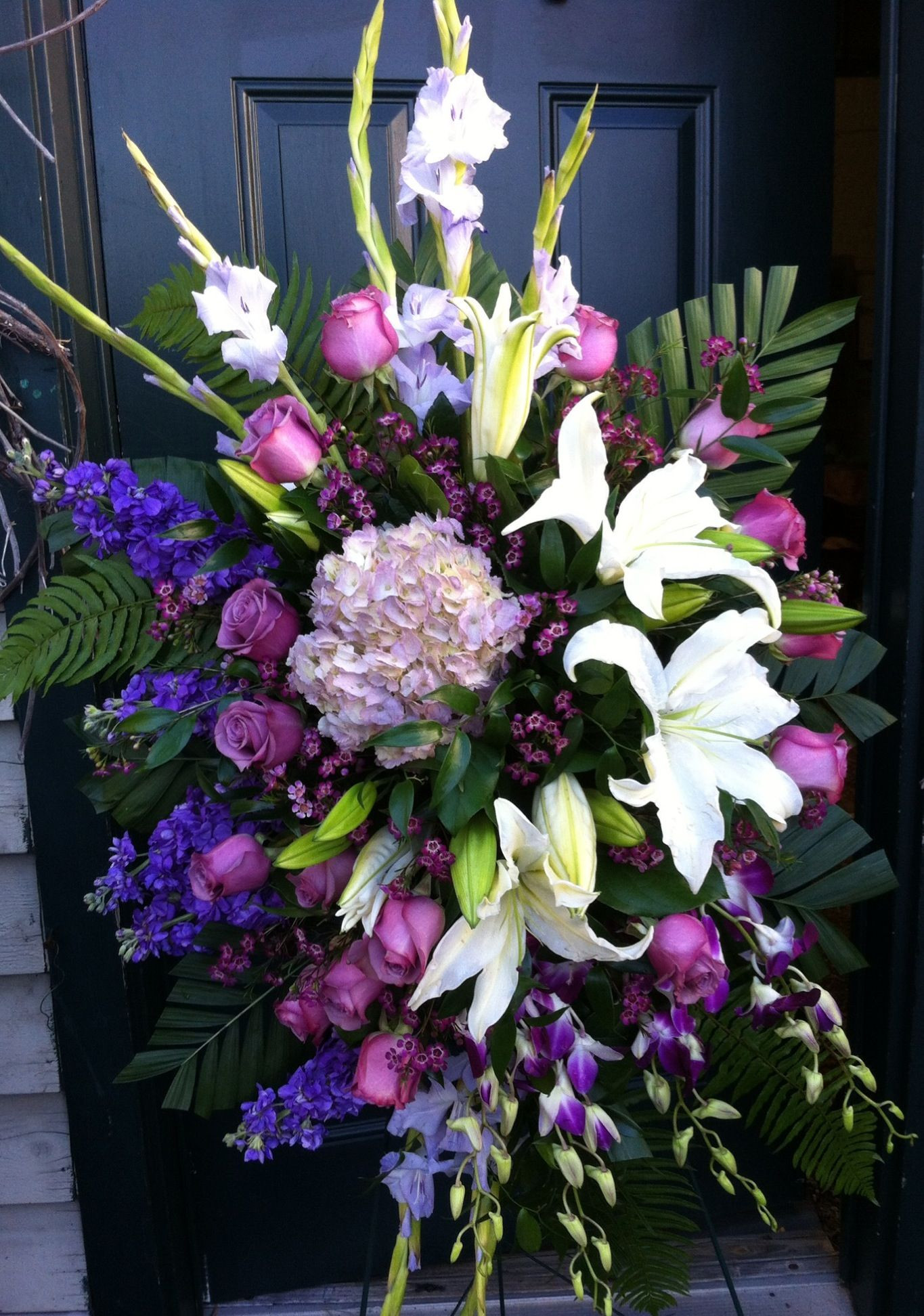 18elegant Wax Flower Colors More Image Ideas