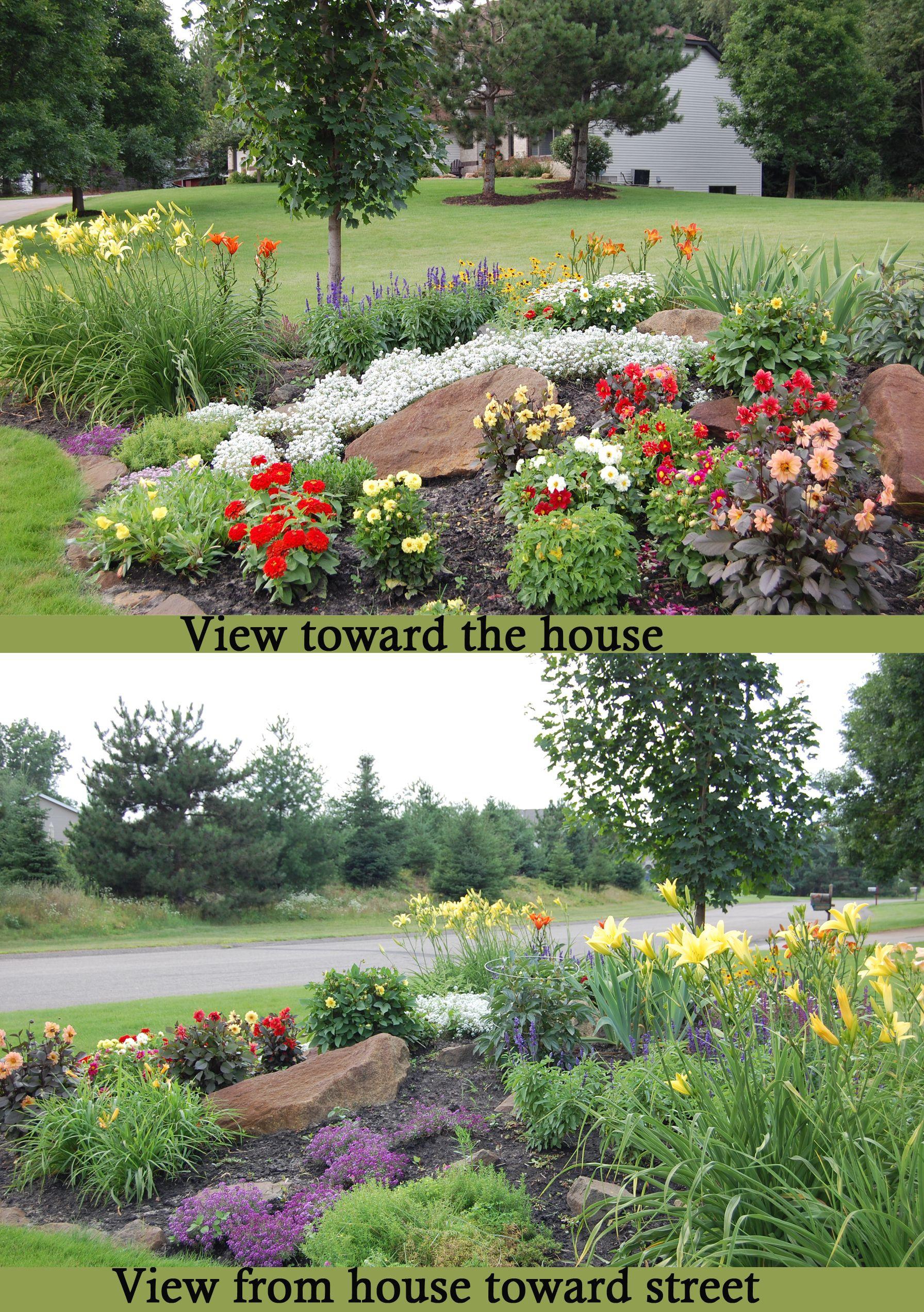This stunning perennial garden includes PERENNIALS Daylilies Evening Primrose Stella Dora