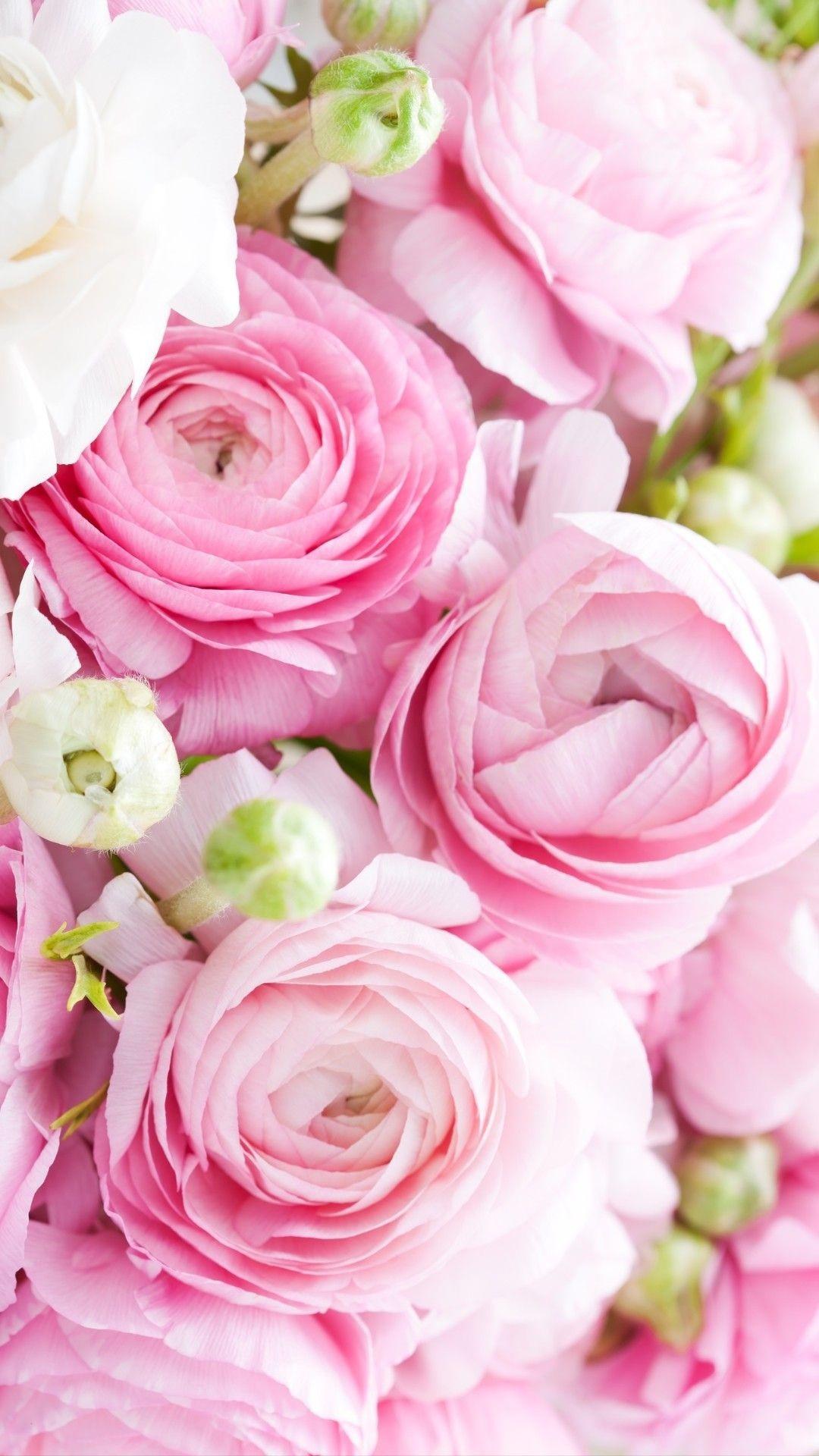Geburtstagskarten Mit Blumen Das Beste Von Pin Von Claudia Rodler Auf Flower ´s