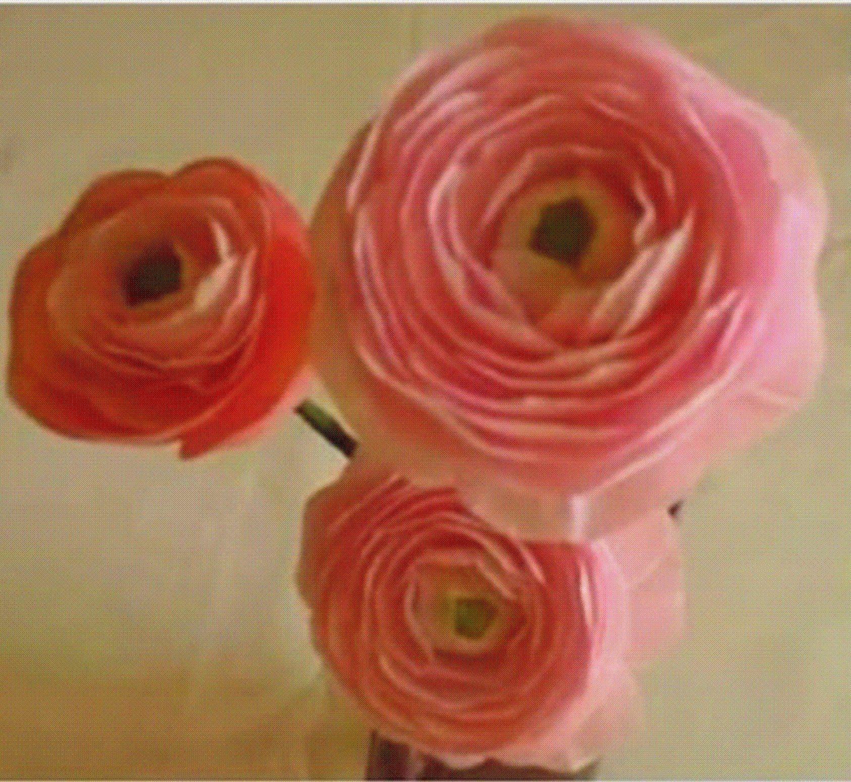 Paper Flower Ranunculus Persian Buttercup Flower 22