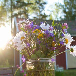 Stockholm-lilac Flower Fresh Swedish Midsummer Flowers Living Svenska Hem Pinterest