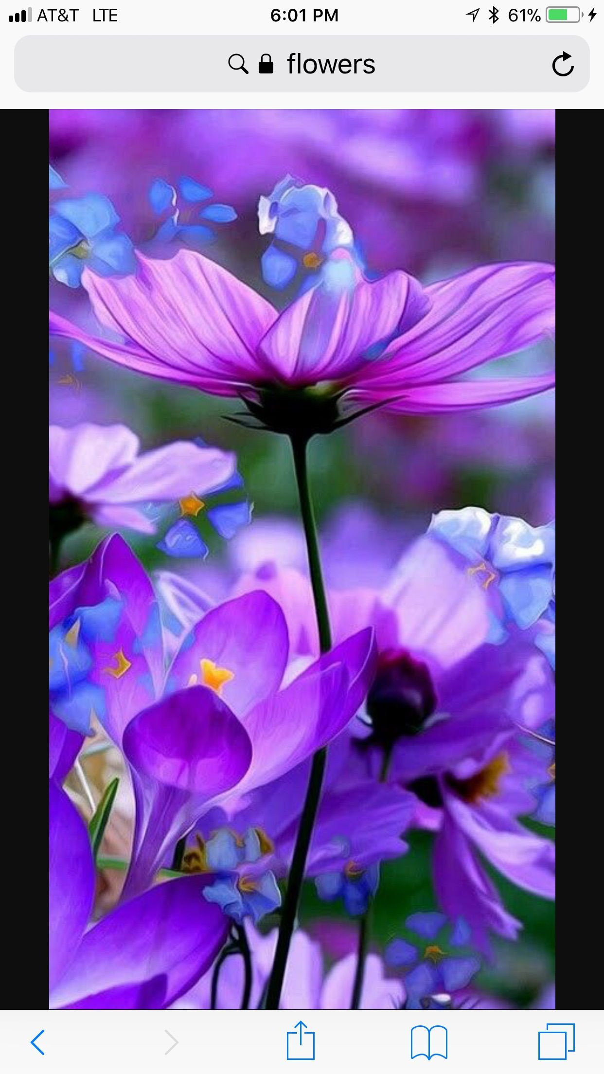 Discover ideas about Purple Flowers Wallpaper