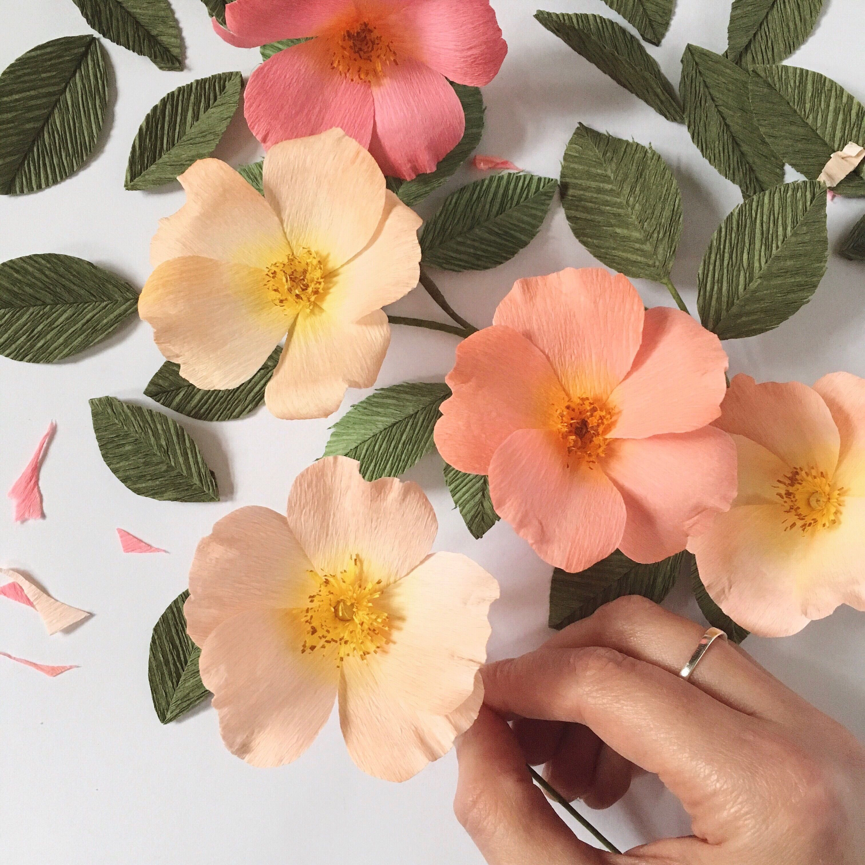 Paper Wild Roses by A Petal Unfolds
