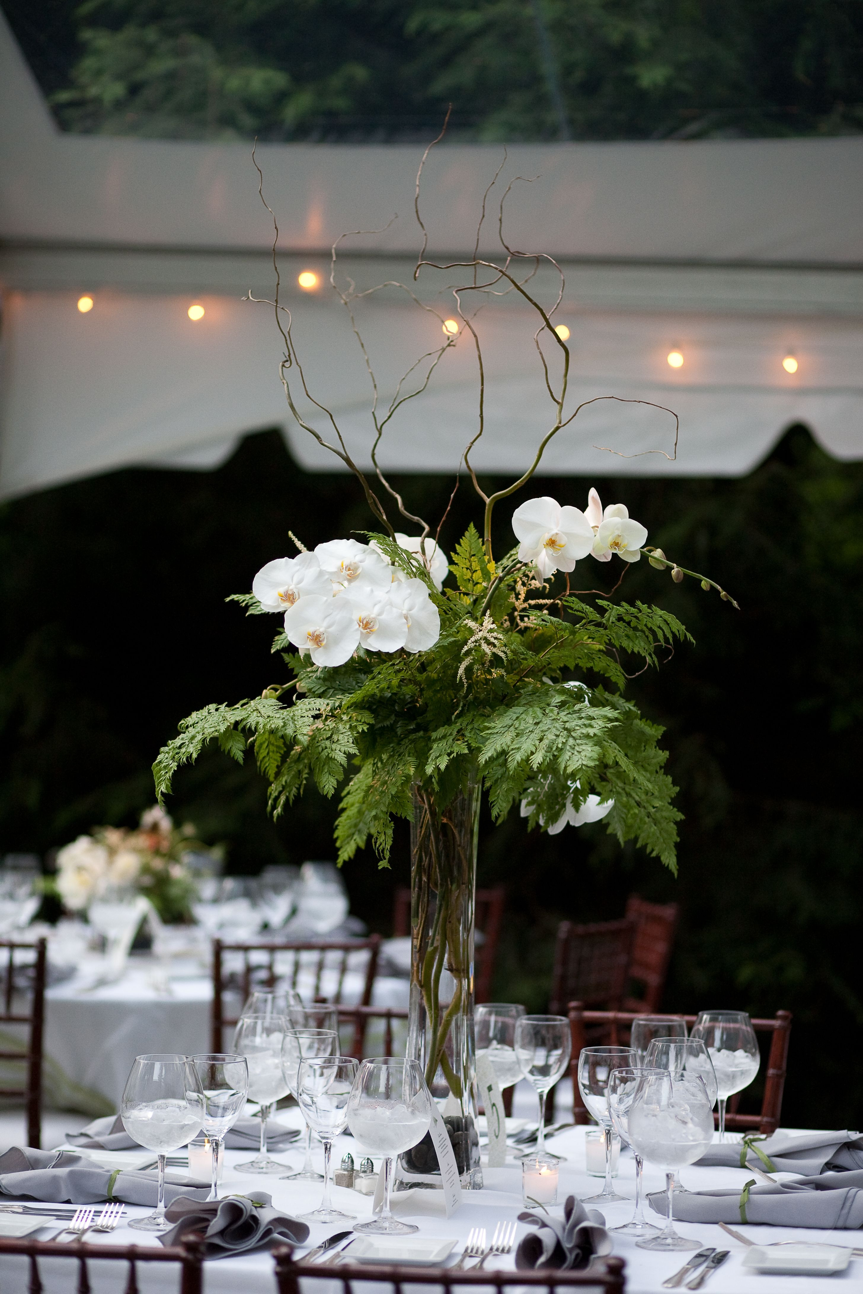 centerpieces were simple but striking lush ferns and strikingly elegant phalaenopsis orchids
