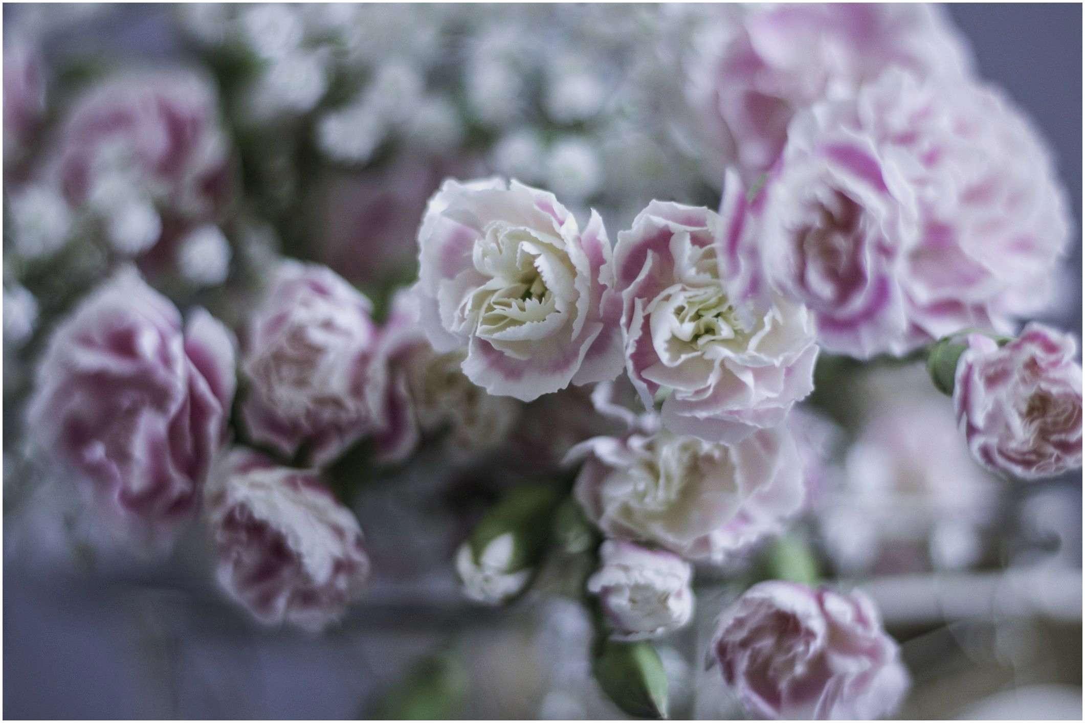 Garden Roses wholesale Best Option Ways to Save Money Your Wedding Flowers 25 Classy Garden