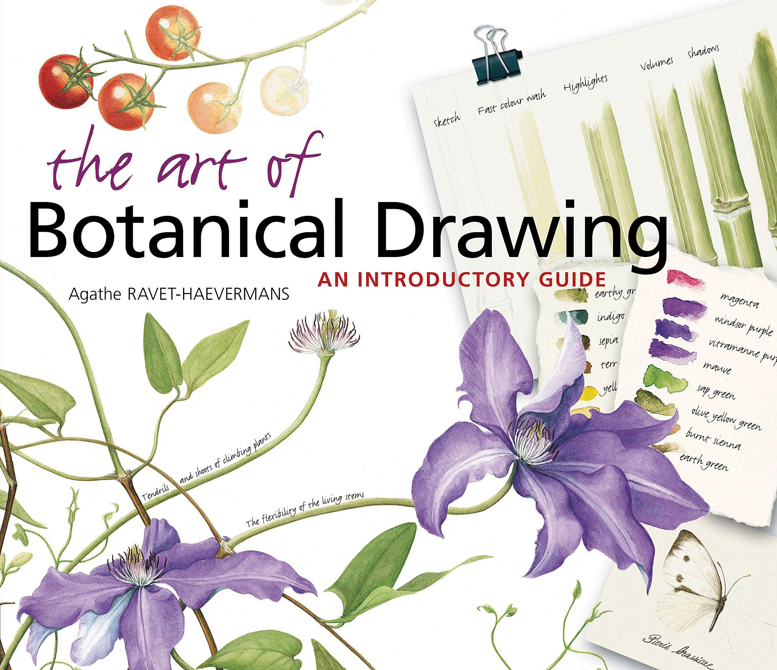 The Art of Botanical Drawing An Introductory Guide Agathe Ravet Haevermans Amazon Books