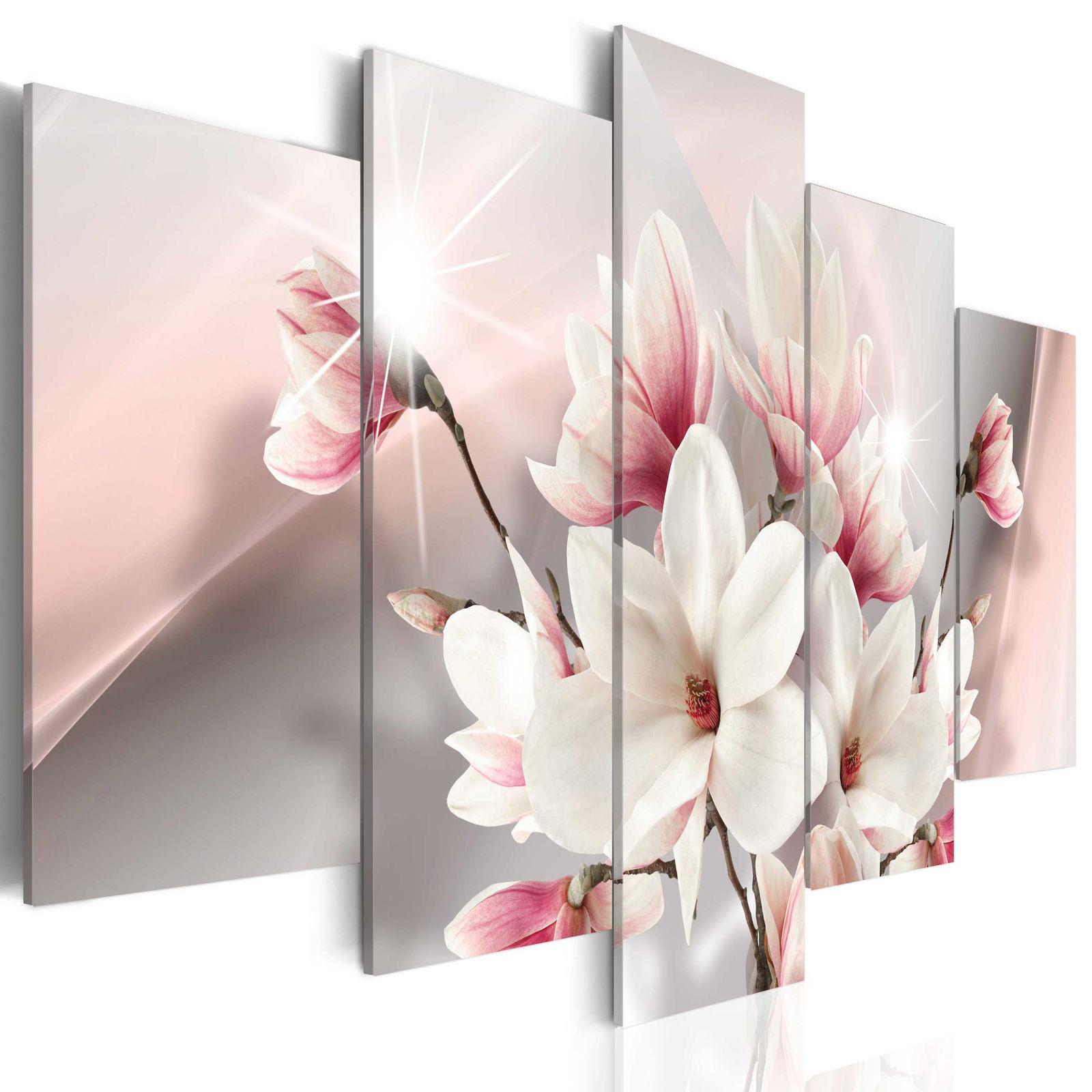 Leinwand Bilder Blumen Weiß Magnnolien Natur Akustikbild Wandbilder Xxl
