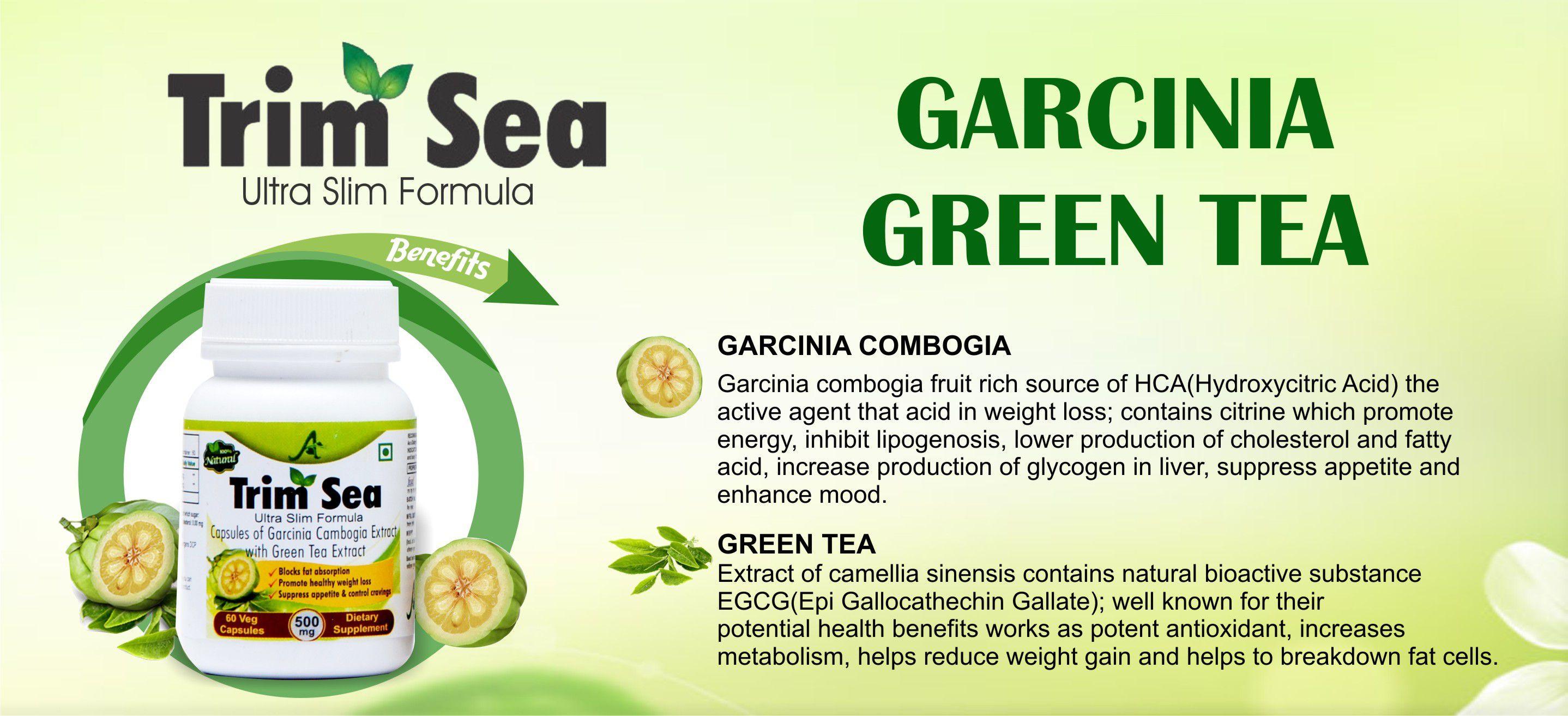 TRIMSEA GARCINIA BOGIA AND GREEN TEA EXT 60CAP 500MG 500 mg Fat Burner Capsule