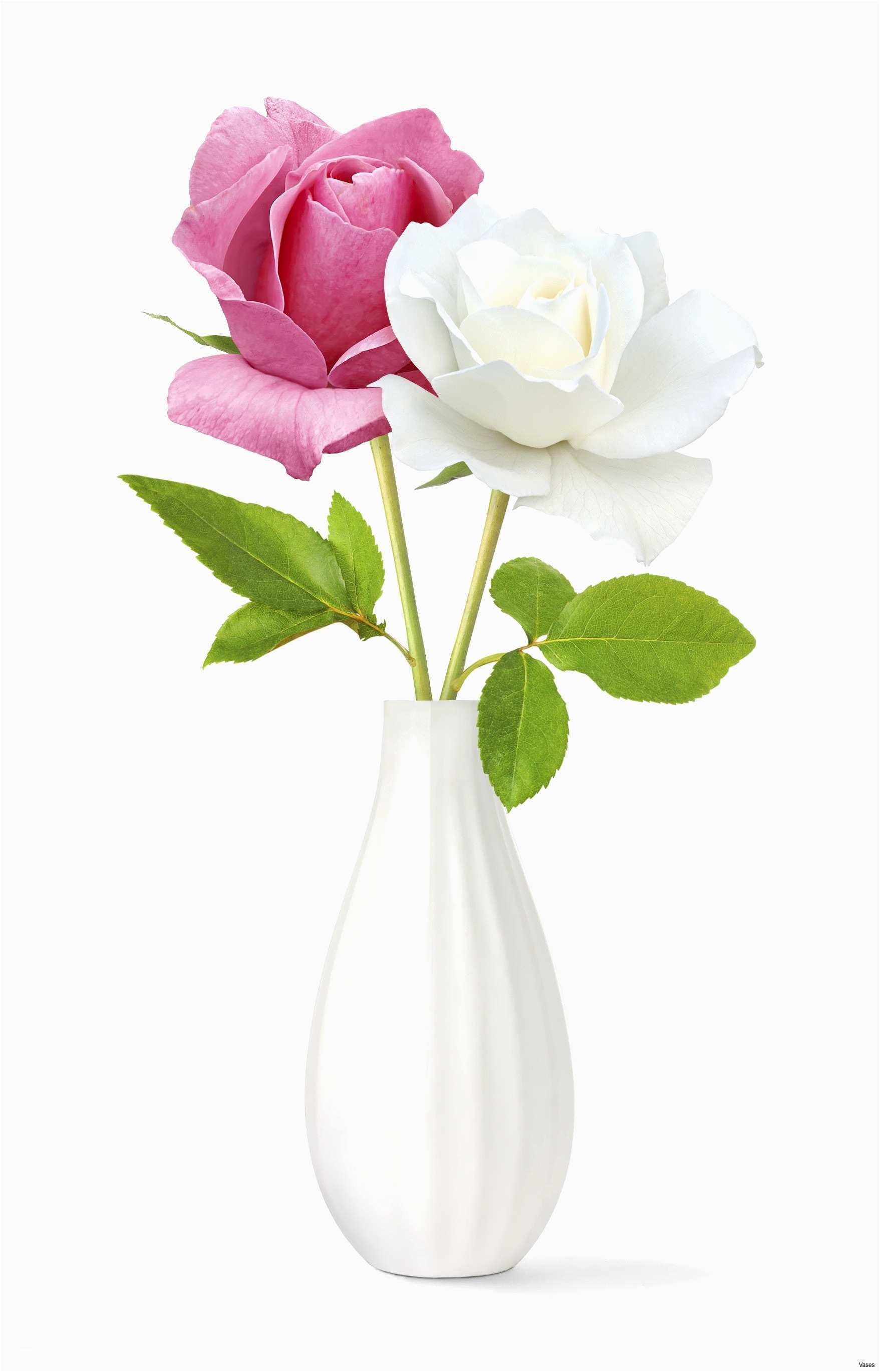 Happy Birthday Flowers Best Roses Red In A Vase Singleh Vases Rose Single I