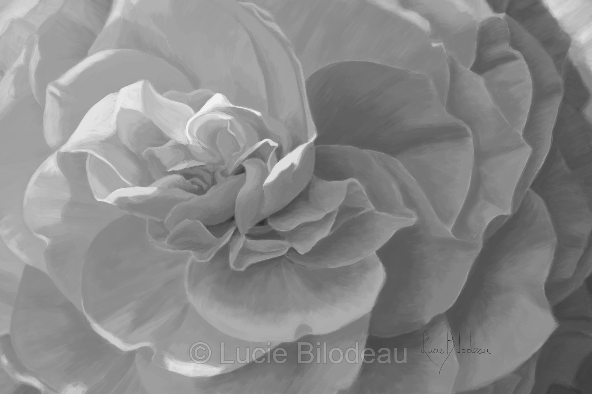 "Black and white version of Lucie Bilodeau s painting ""Cheerful"" Available as prints"