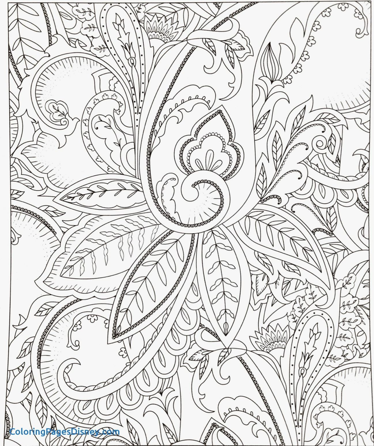 Fantastic Coloring Pages Fish Beautiful Best Fresh S S Media Cache Ak0 Pinimg Fish Name And Picture