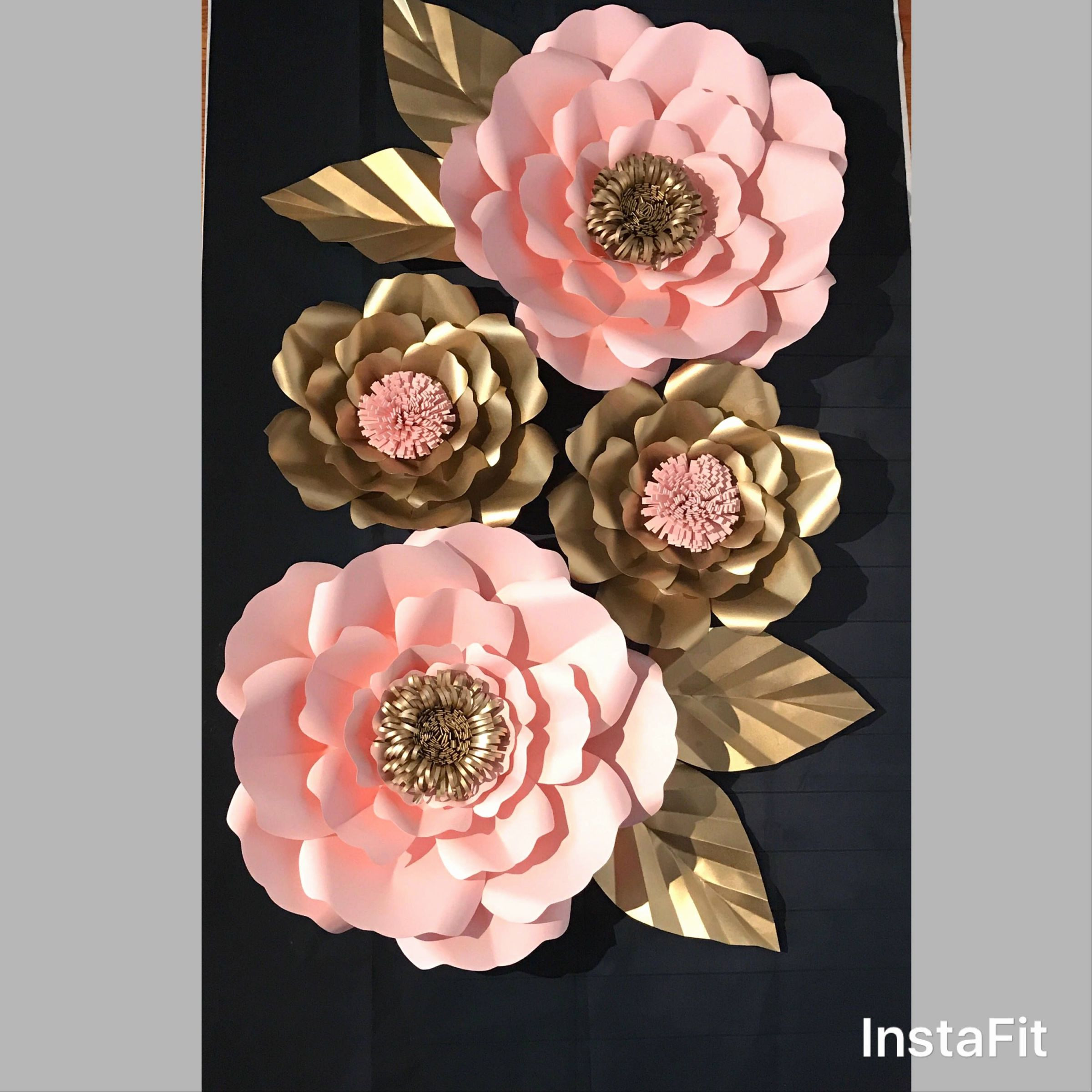 Best 40 Inspirational Different Types Flowers Types Carnations Flowers pa3