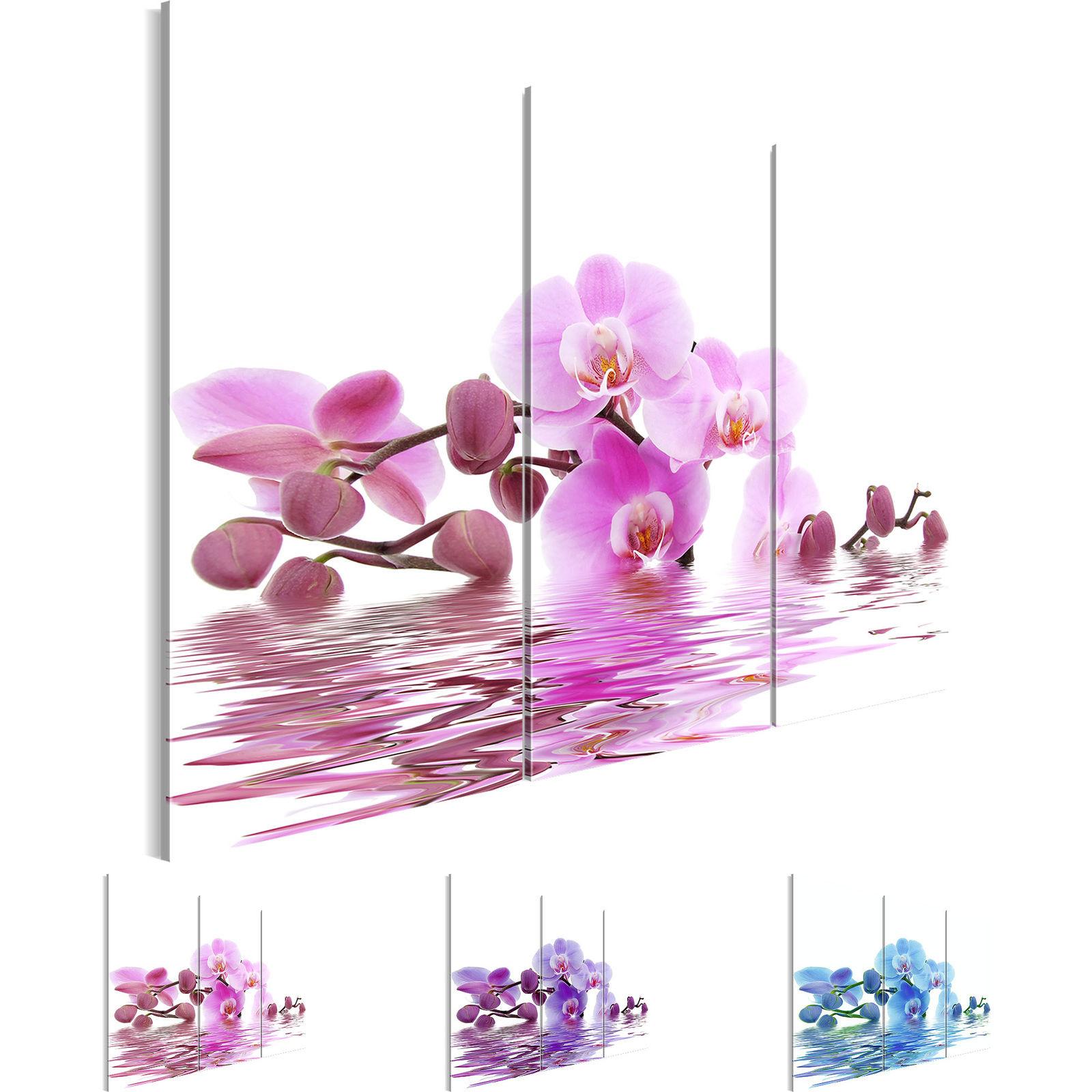 Wandbilder Xxl Bilder Blumen Orchidee Vlies Leinwand Bild Kunstdruck p