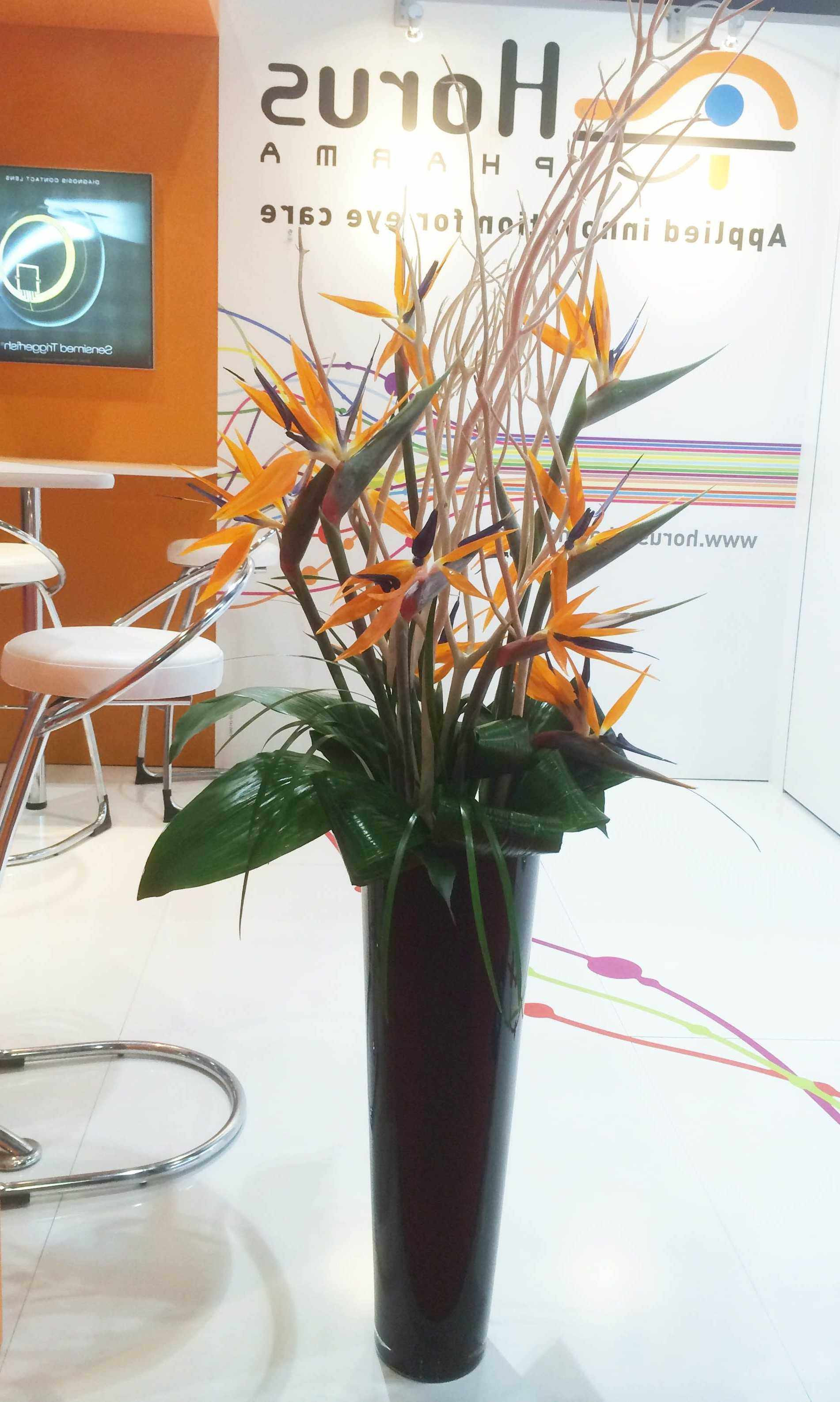 Cheap Flower Delivery Nyc Fresh 2 Od orange Bird Paradise Twig Foliage In Black Vase