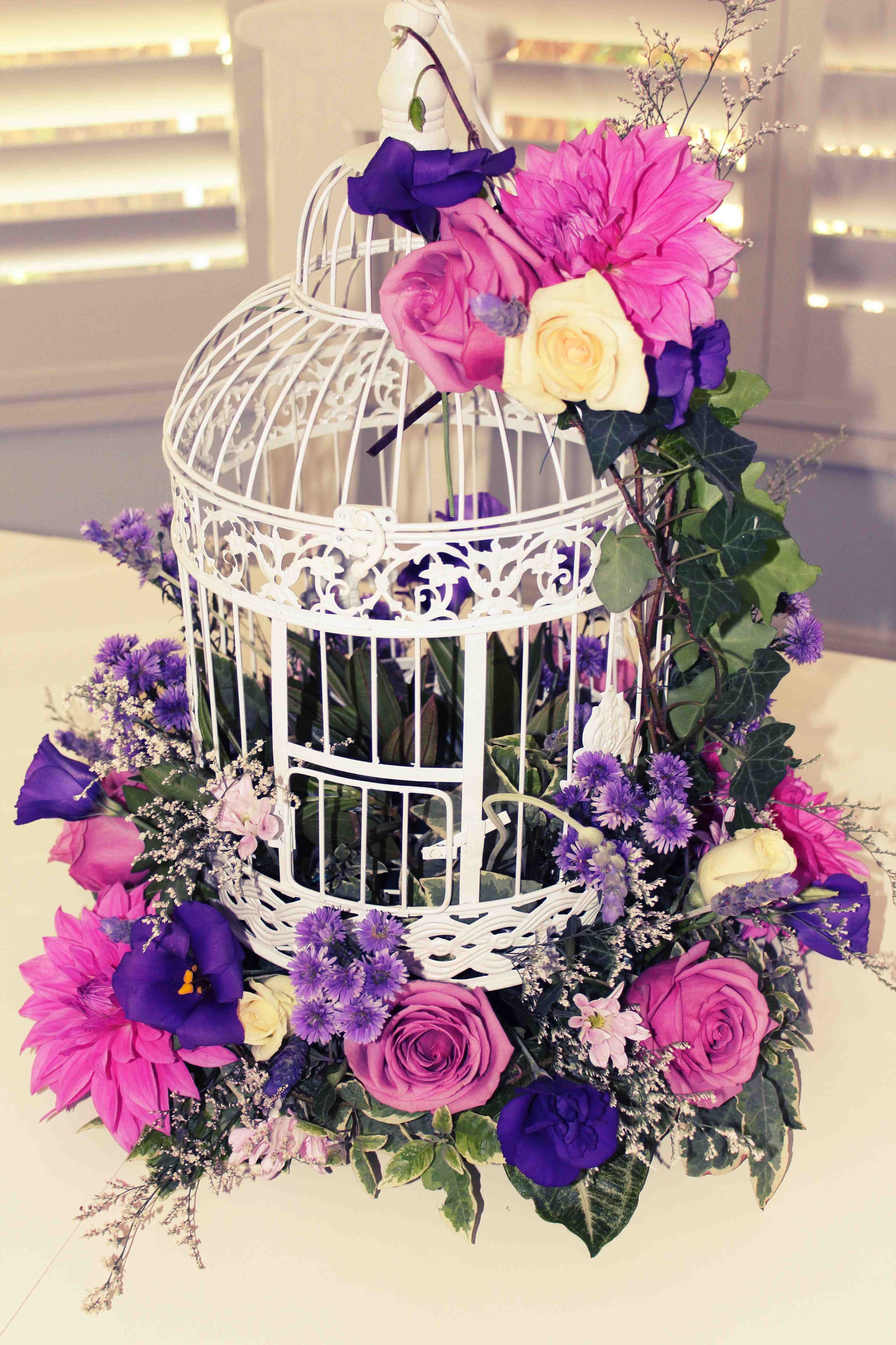 Flowers & Birdcages x avenue