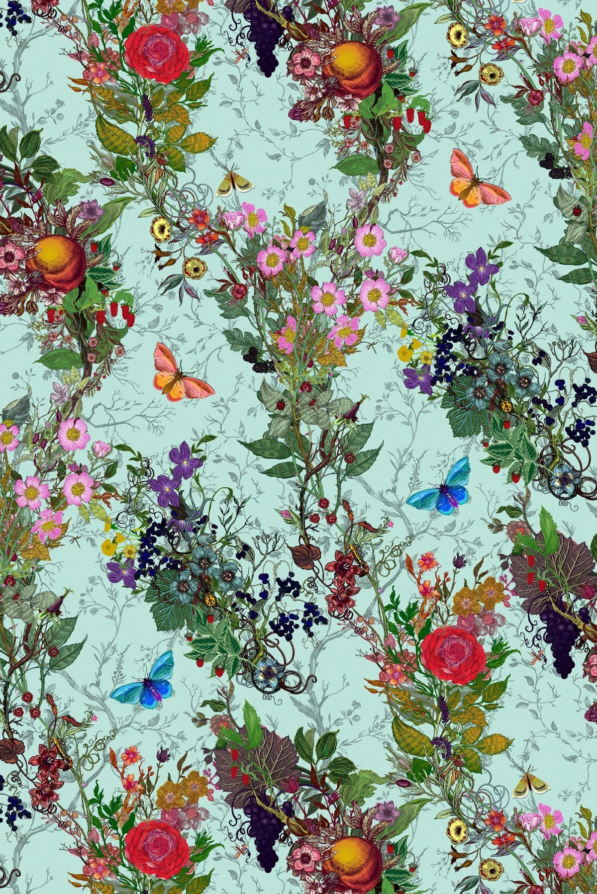 Beautiful floral flower rose lilac butterfly butterflies spring garden red blue green orange purple pink yellow white background pattern wallpaper