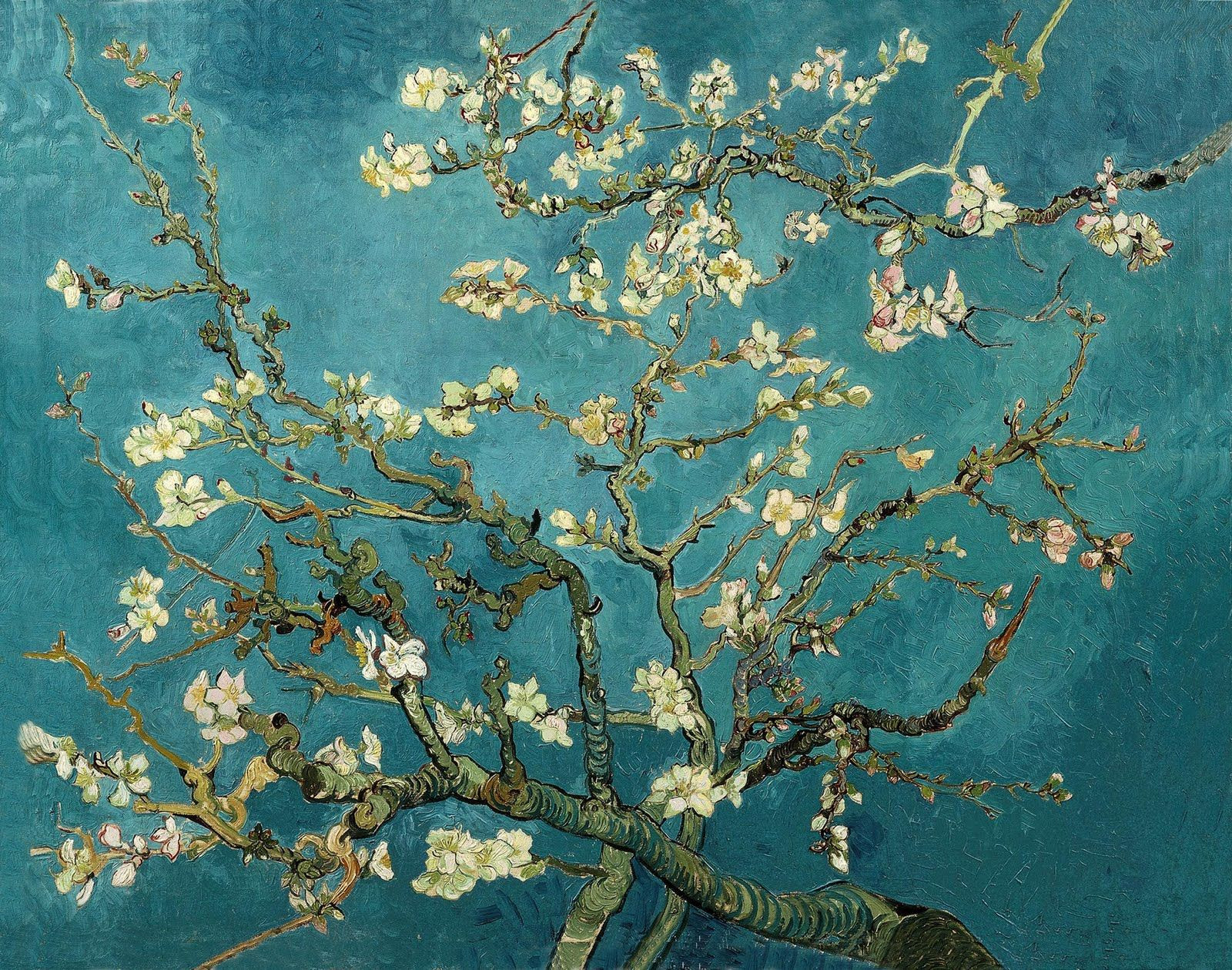 "Van Gogh was moved to create ""Almond Blossom"" when his nephew was born Description from rosegoestoamsterdam I searched for this on bing"