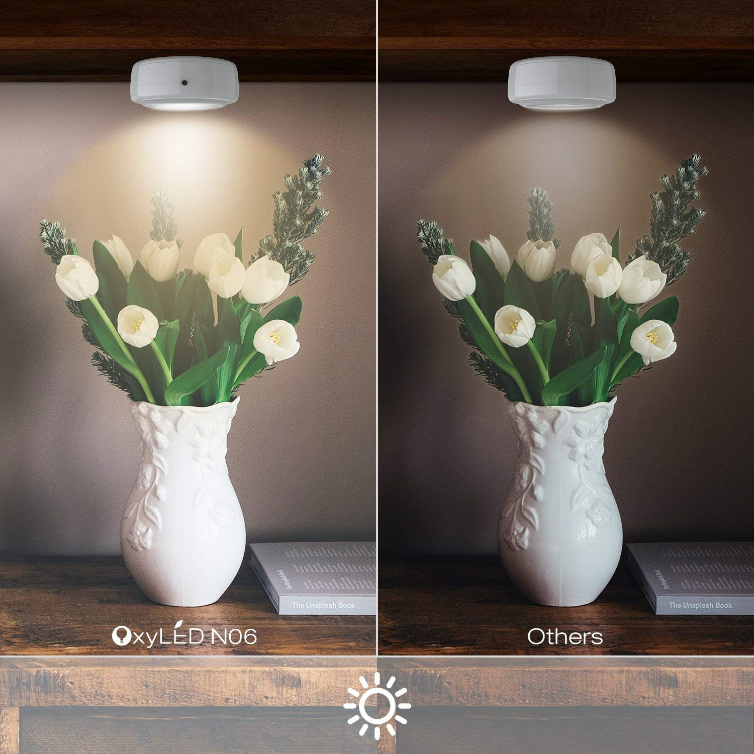 Florist Delivery today Unique Wireless Led Puck Lights Oxyled Closet Light Cordless Battery