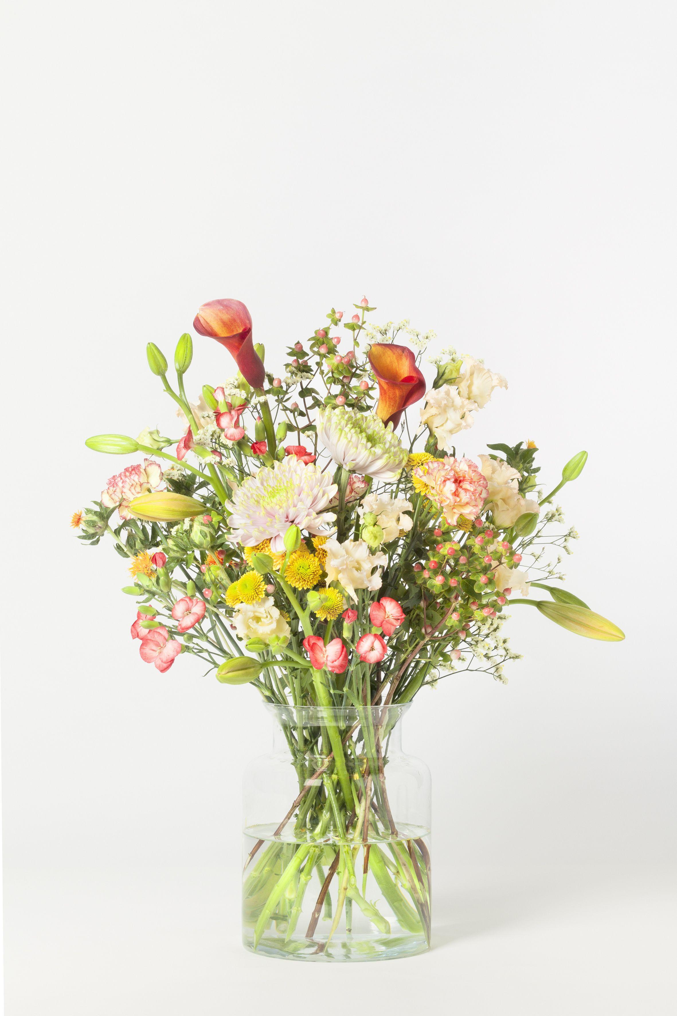 Der Herbst ist da Tu dir was Gutes und wärme dich mit unserem individuellen Blumen