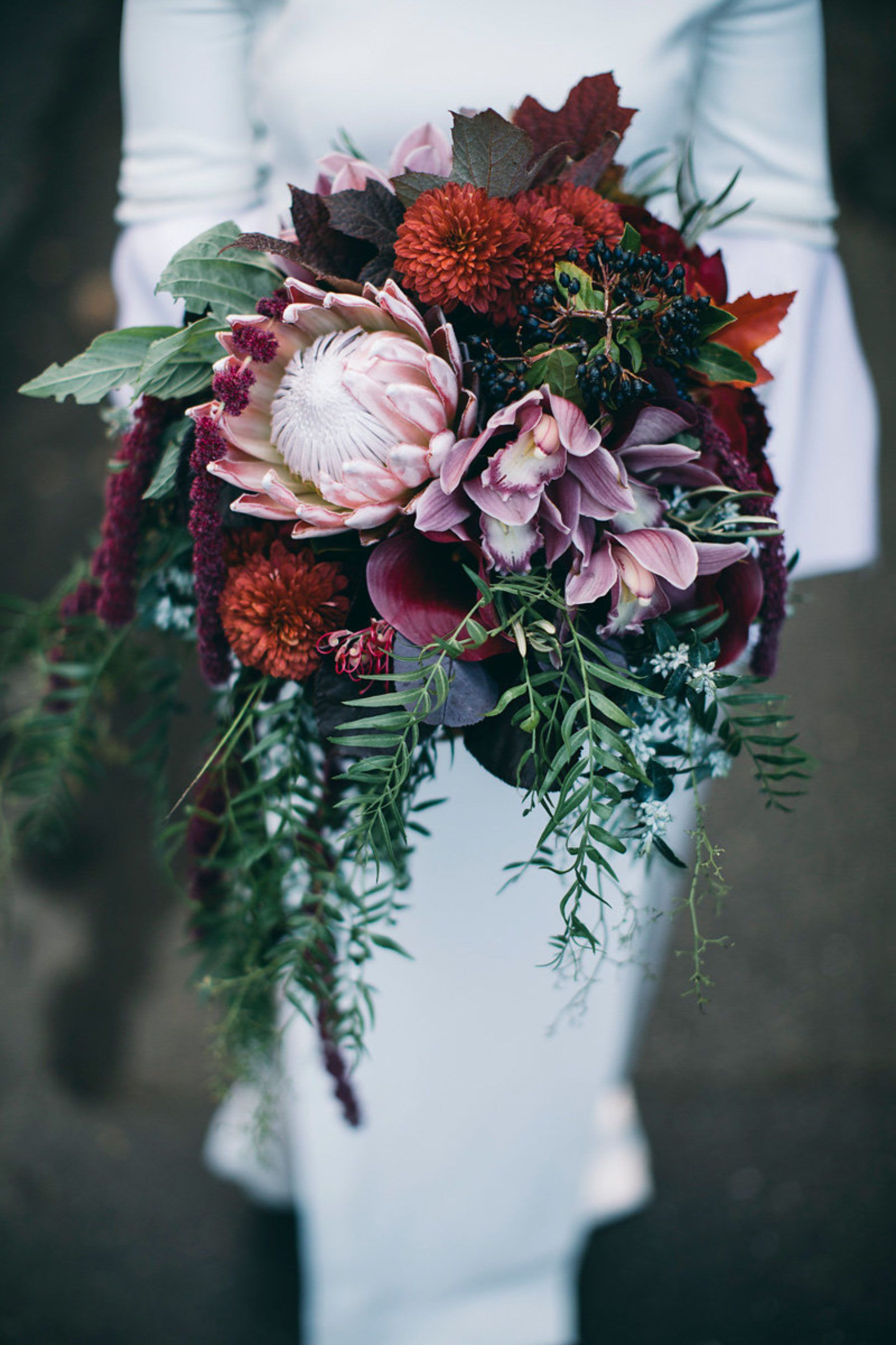 berry toned bouquet with king protea and orchids = love