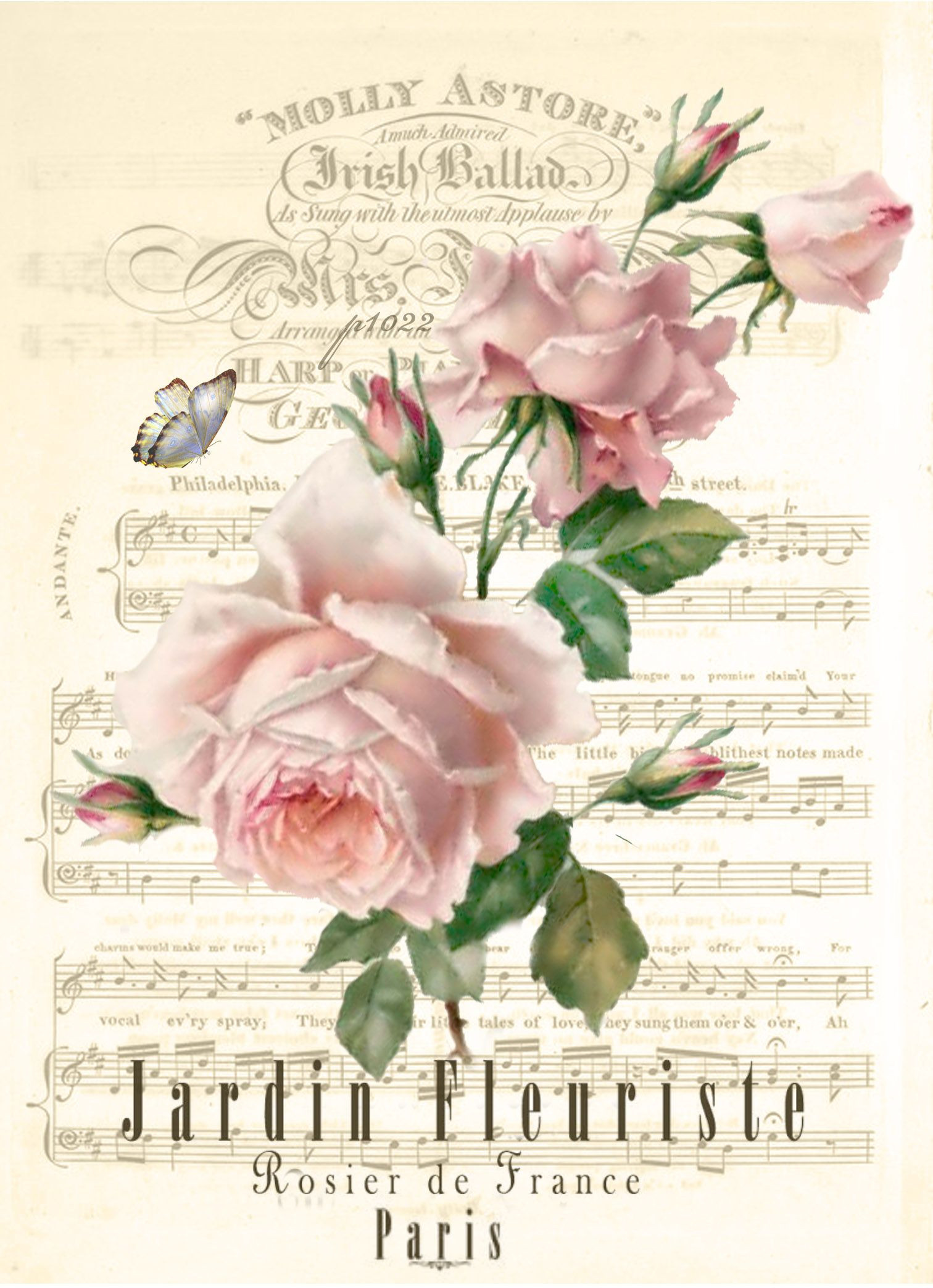 Vintage rose music sheet Digital collage p1022 free for personal use