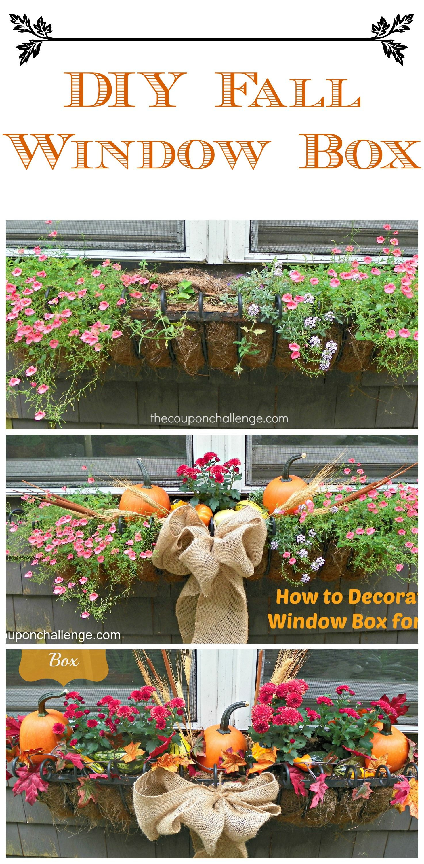 Fall Window Box DIY FallFlowers I do this with my planters and enjoy them right through November