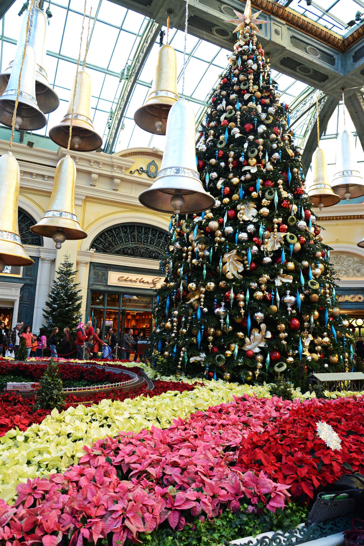 The Bellagio Hotel Casino holds their annual Christmas tree lighting in Las Vegas on December 6 2013 by Bryan Haraway LVCVA