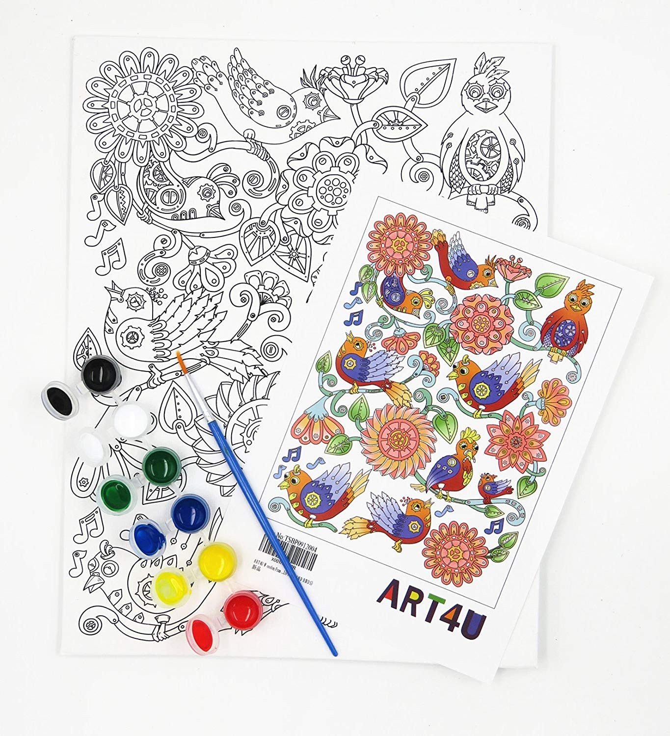Paint by No Number Draw Your own Design for Kids Students Adults Beginner 9x12 inch with Brushes and Acrylic Pigment Flowers and Birds