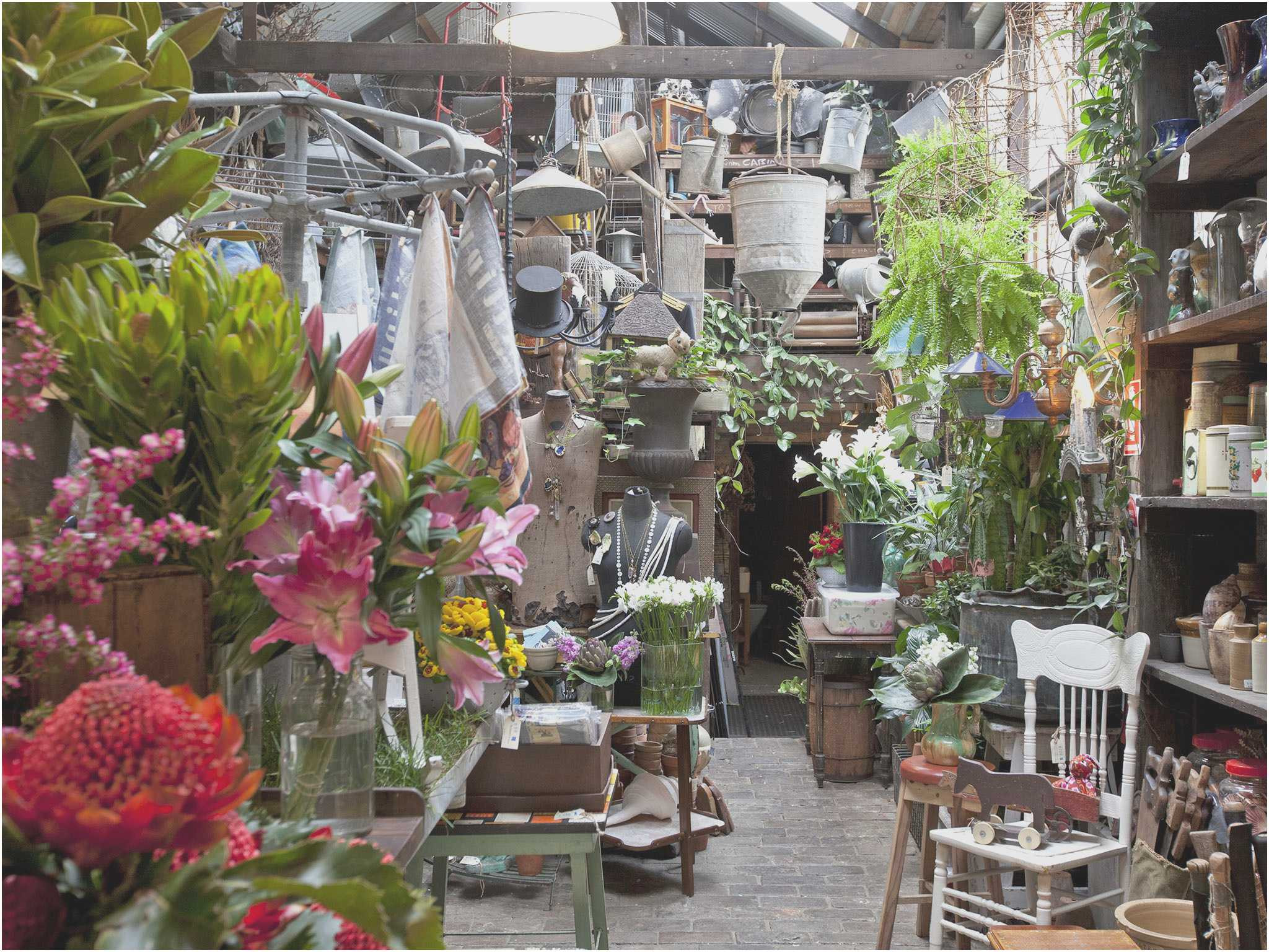 Interior shot of antique shop Seasonal Concepts with flowers old crockery and garden tools
