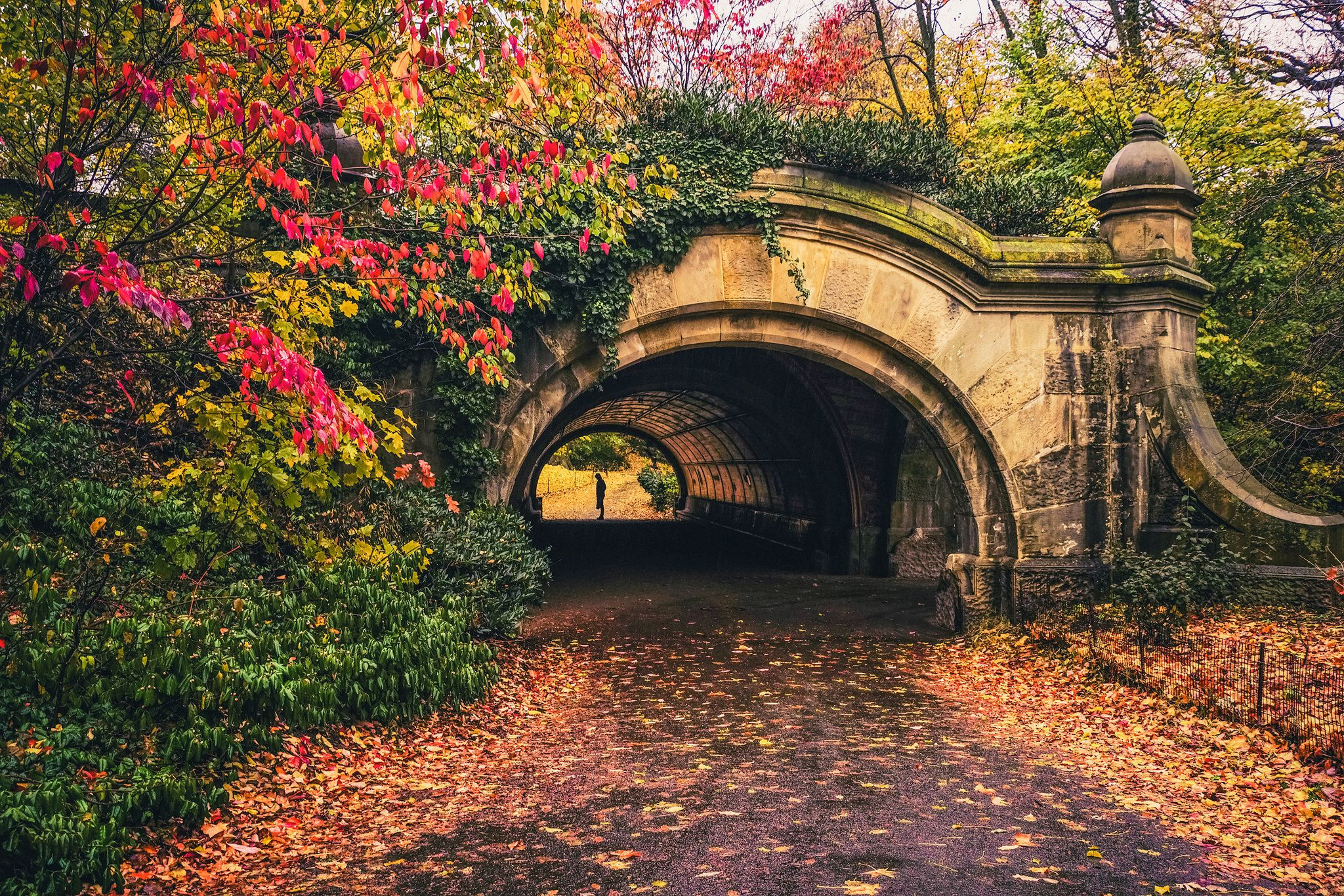 Brooklyn Autumn in Prospect Park New York City Autumn Fall foliage in Prospect Park Brooklyn New York City