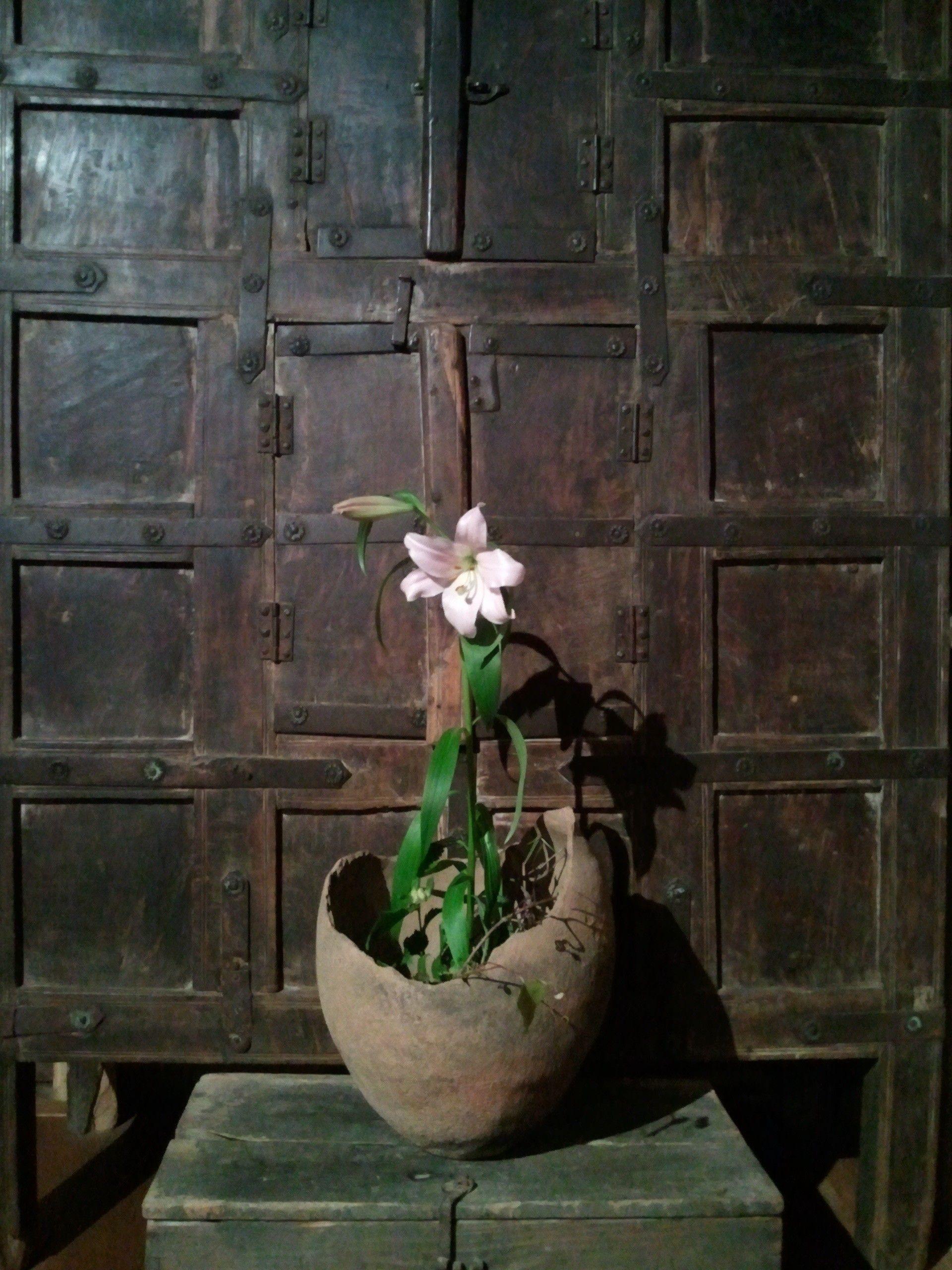 ikebana flower arrangement in clay pot by Yuji Ueno wabisabi
