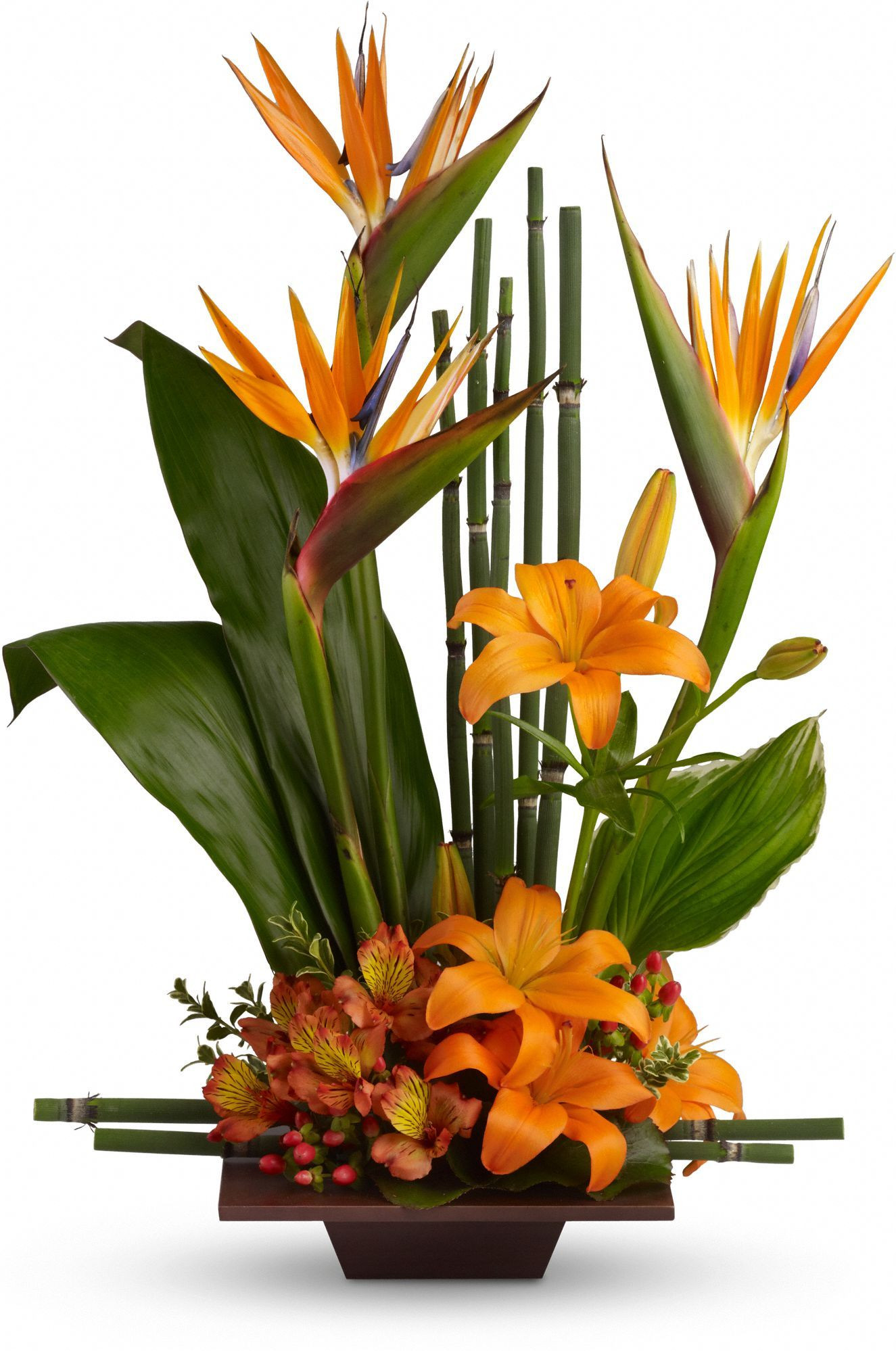 Teleflora s Exotic Grace Save on this bouquet and many others with coupon code TFMDAYOK1B2 fer expires 05 14 2012
