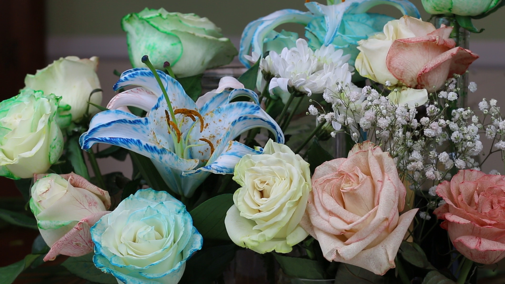 Jacksonville Flower Delivery Lovely How to Tie Dye Flowers with Osmosis Craft Curious