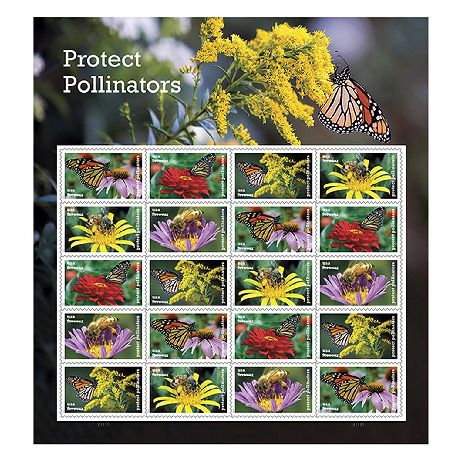 Amazon Protect Pollinators Sheet of 20 Forever USPS First Class one Ounce Postage Stamps Environment Wedding Party fice Products