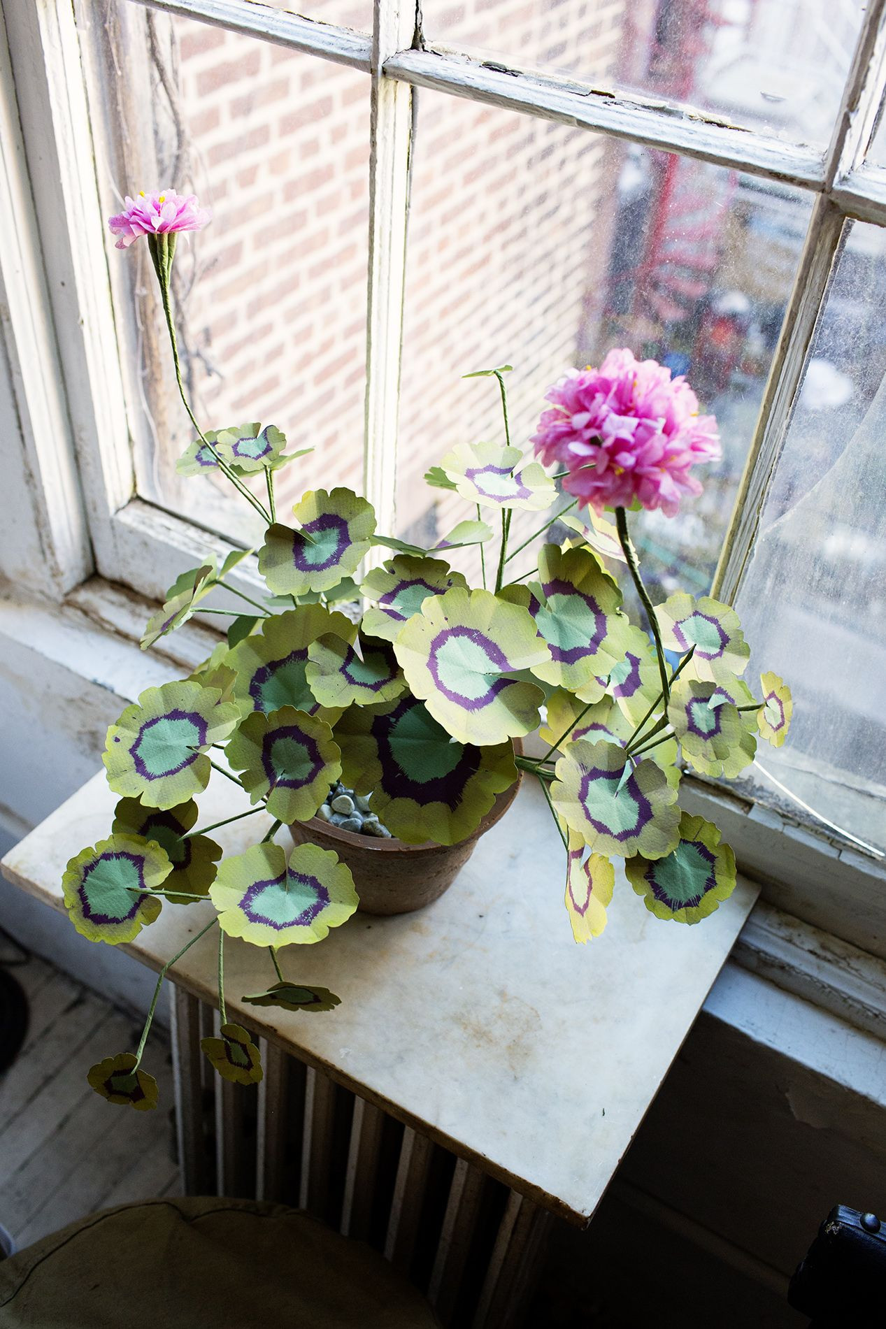 John Derian at Home in New York City the selby variegated geranium