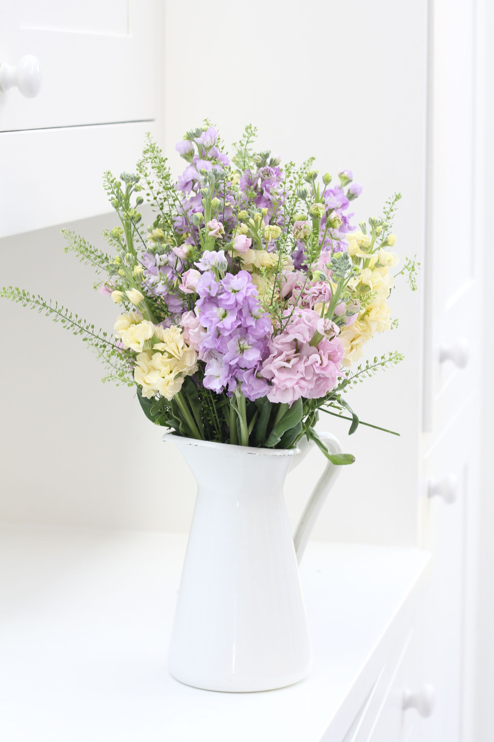 Fragrant pastel stocks with delicate green bell foliage make the perfect bination for spring blooms Shop our bouquets for next day delivery straight