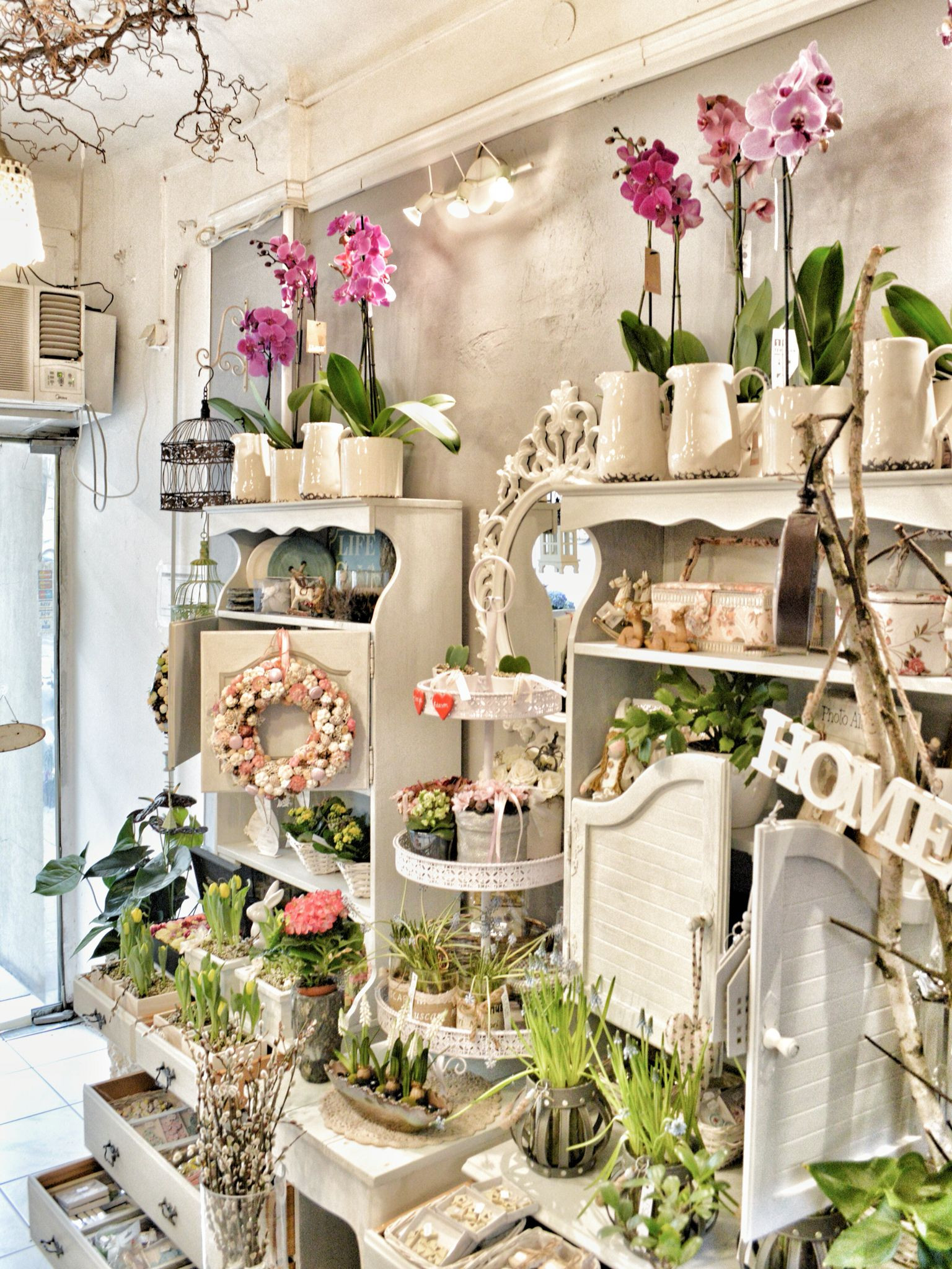 DIFIORI Virágszalon Flower shop interior in Budapest