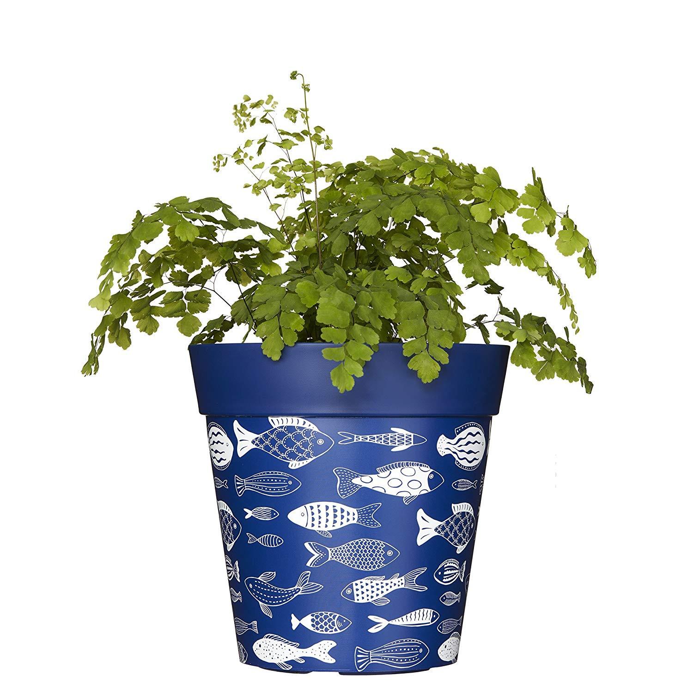Hum Flowerpots Blue Fish Plant Pot Indoor Outdoor Planter Amazon Garden & Outdoors