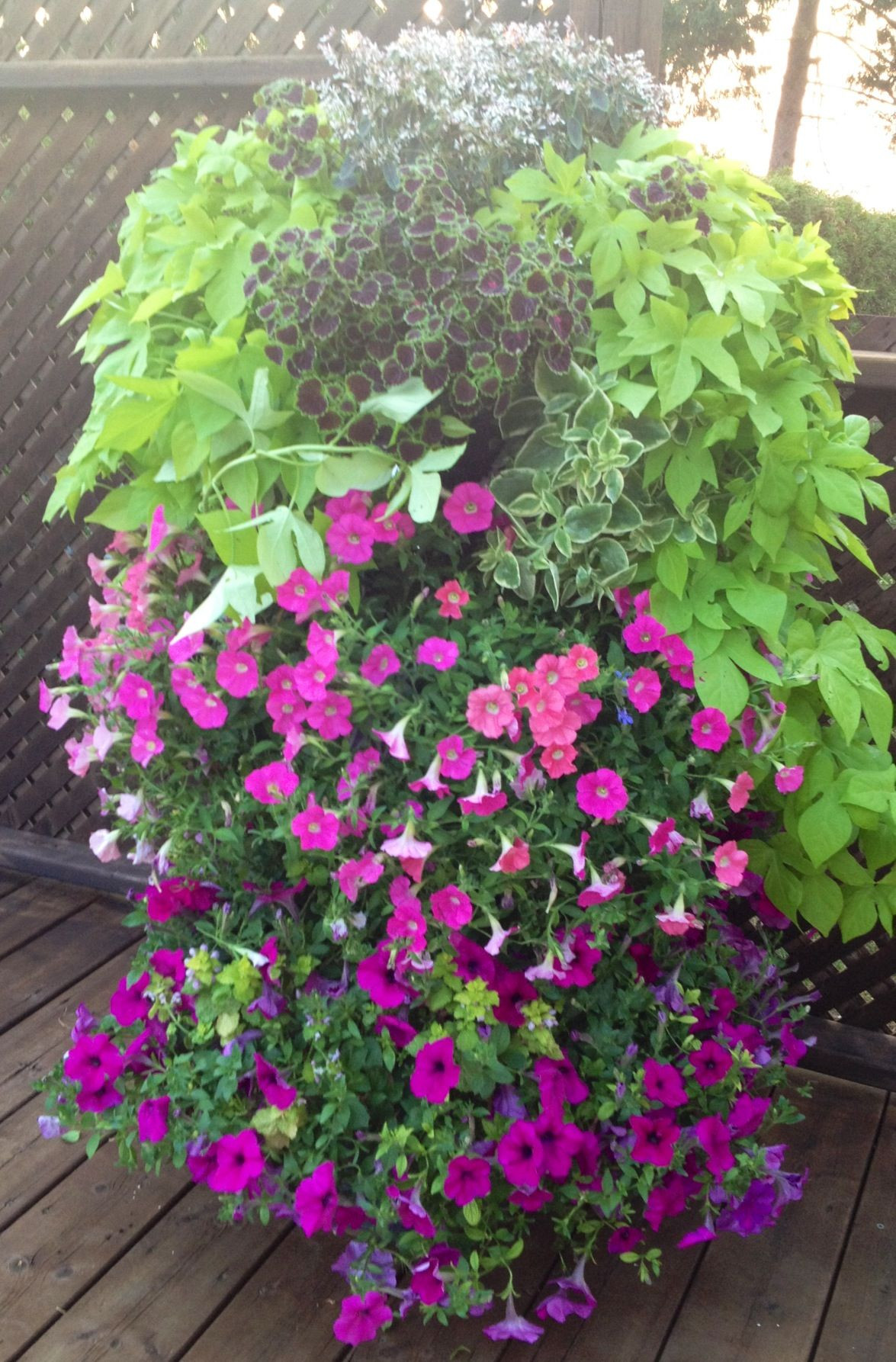 Three tier planter idea
