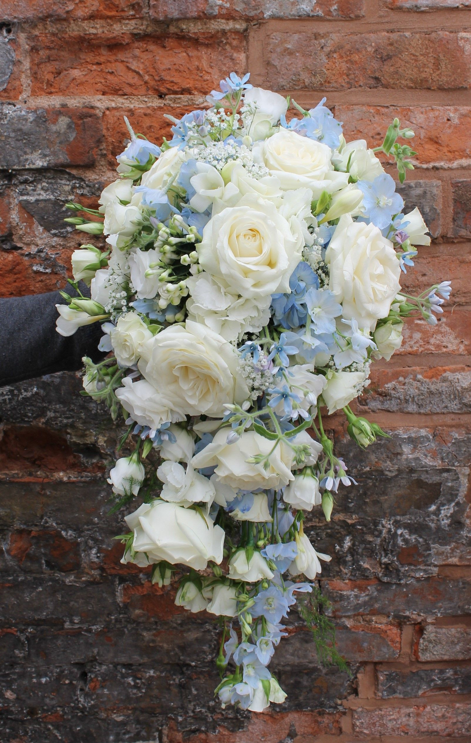 cascading bridal bouquet in pale blue and ivory flowers avalanche roses blue delphinium blue hydrangea oxypetalum lisianthus and freesia