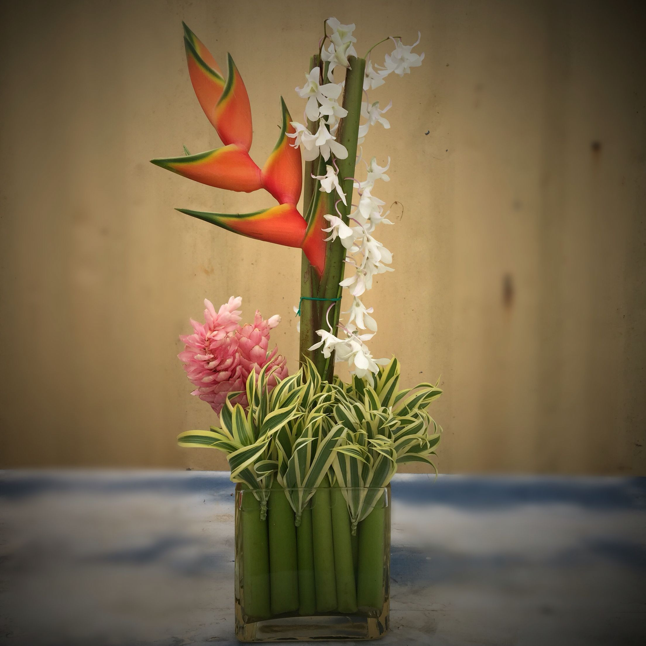 Mothers Day arrangement Heliconia pink ginger Song of India white orchid and wild taro inside vase Sustainable local Guam flowers and plants