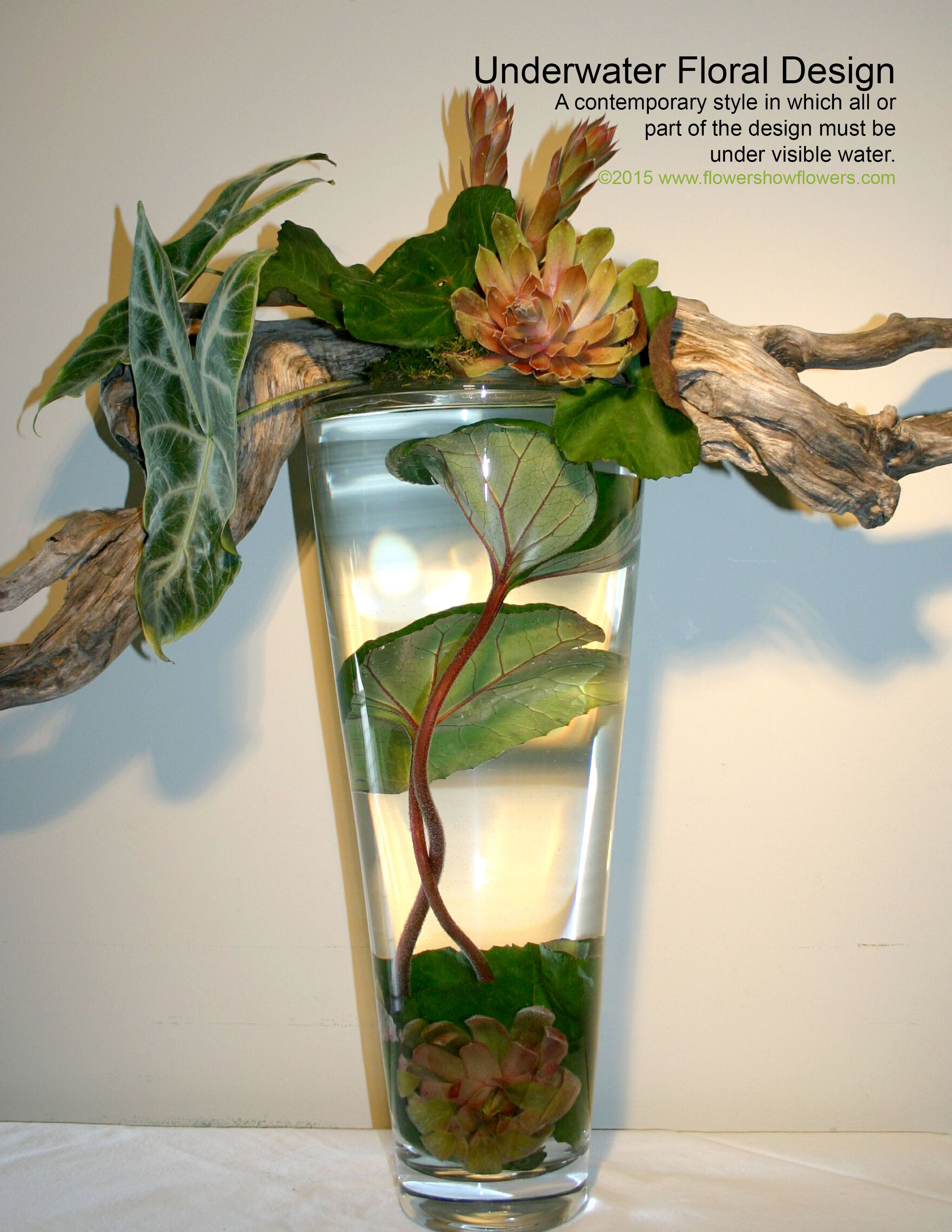 UNDERWATER FLORAL DESIGN From